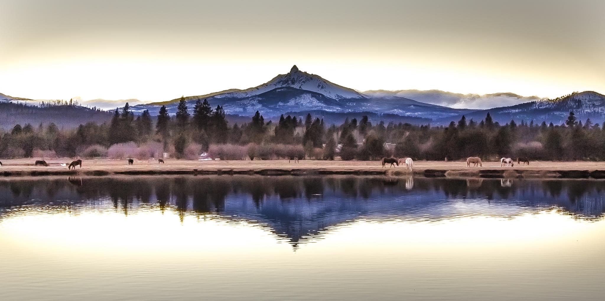 Black  Butte Ranch by David Hurt