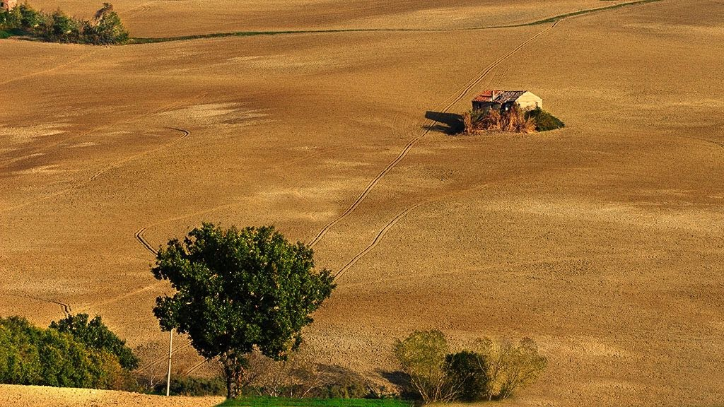 country  by Luca Belogi