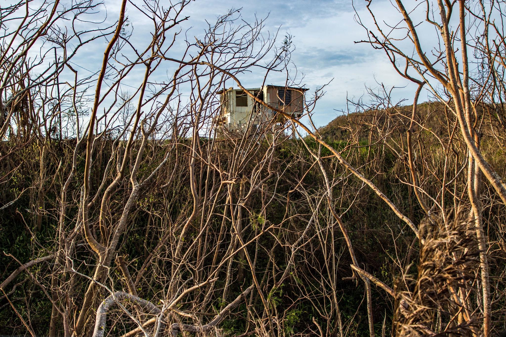 Hurricane Maria by Vanessa R Lazzarini