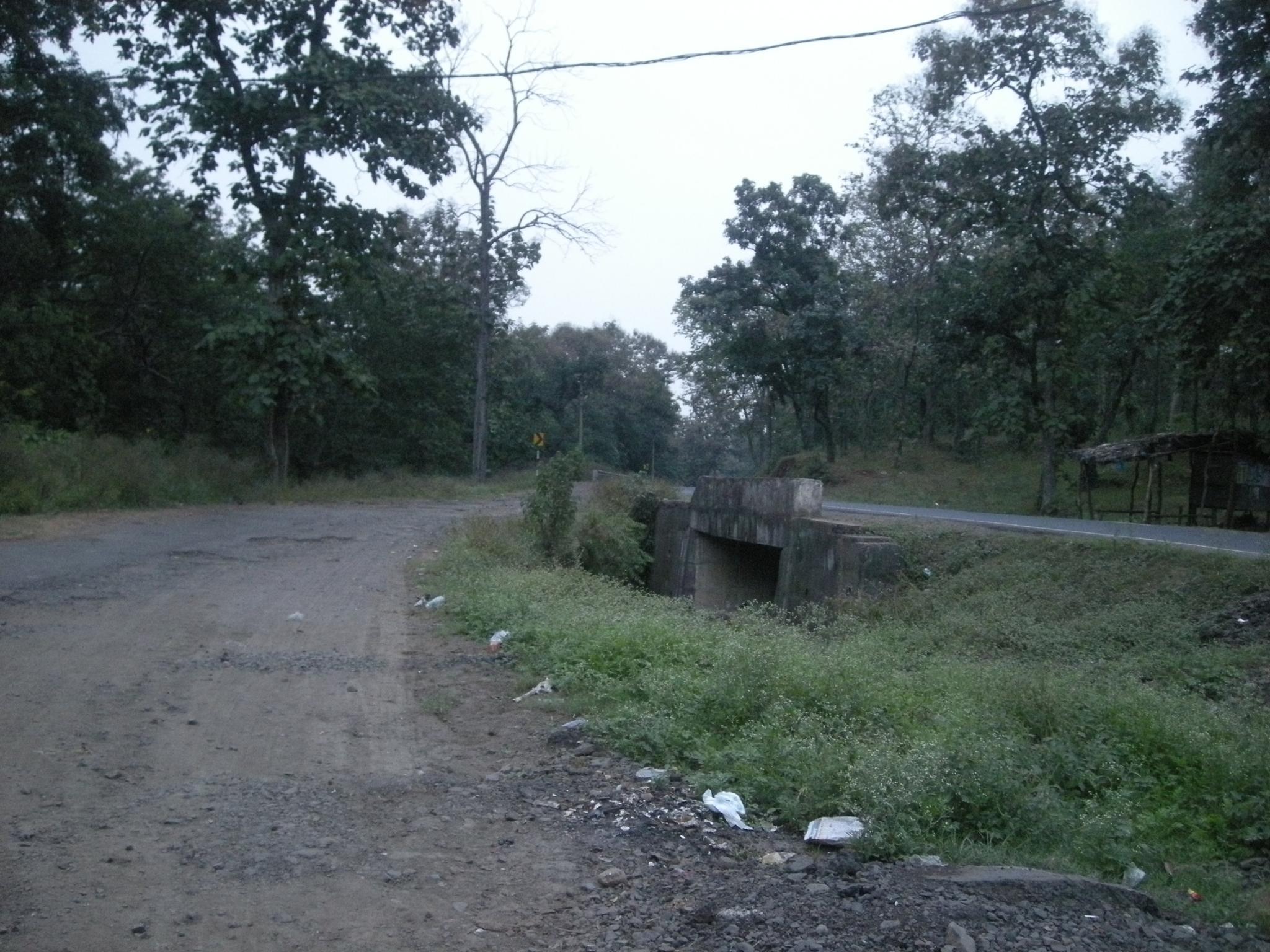 ROAD SIDE by Rajesh Khurana