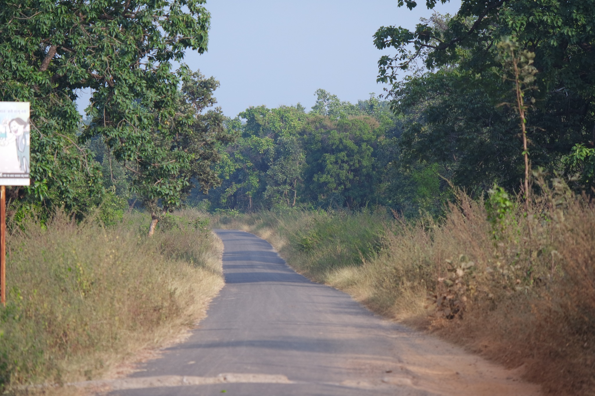 Silent Road  by Rajesh Khurana