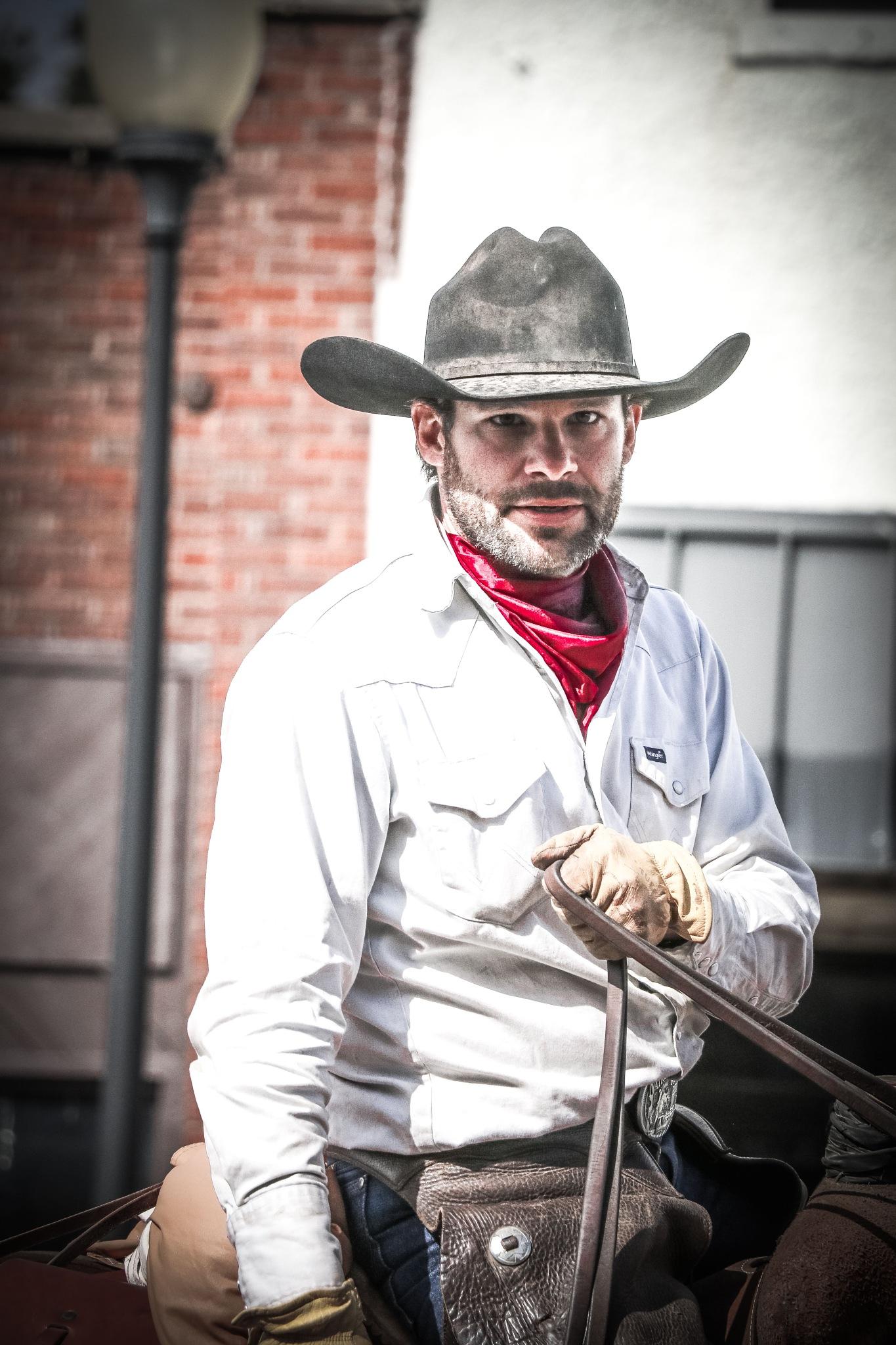 Hello Cowboy by Dixie L Colquhoun