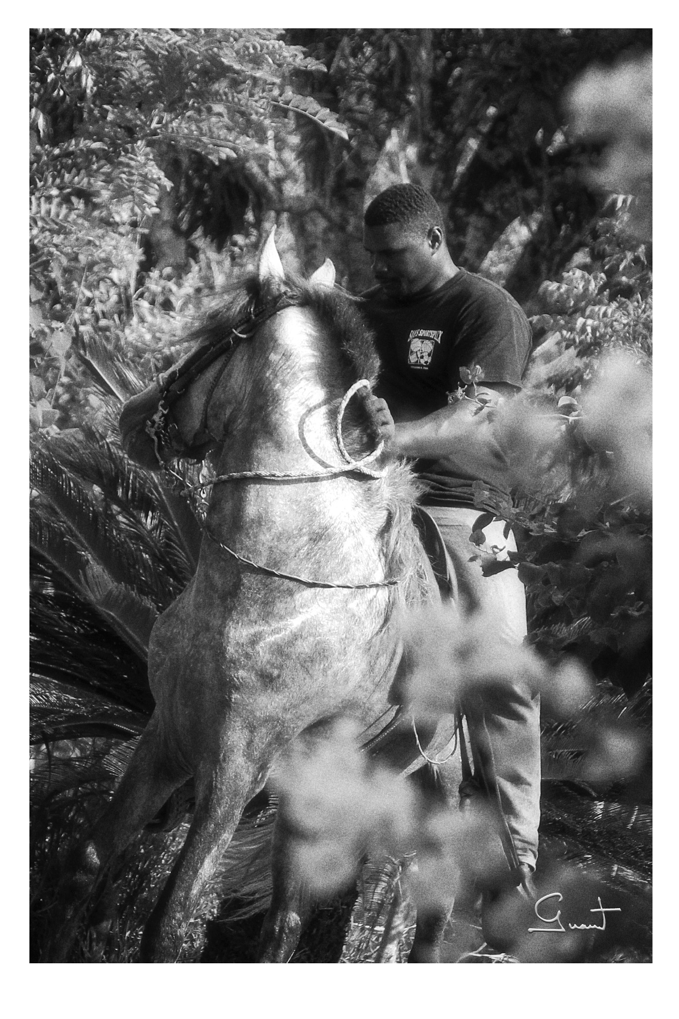 The men and his horse by PeterGrant