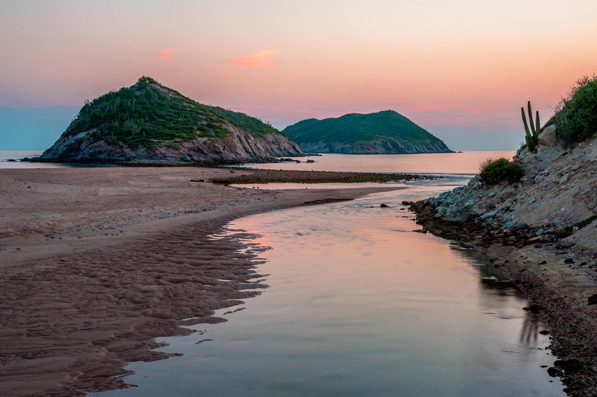 Pink Sunset by grazinawade