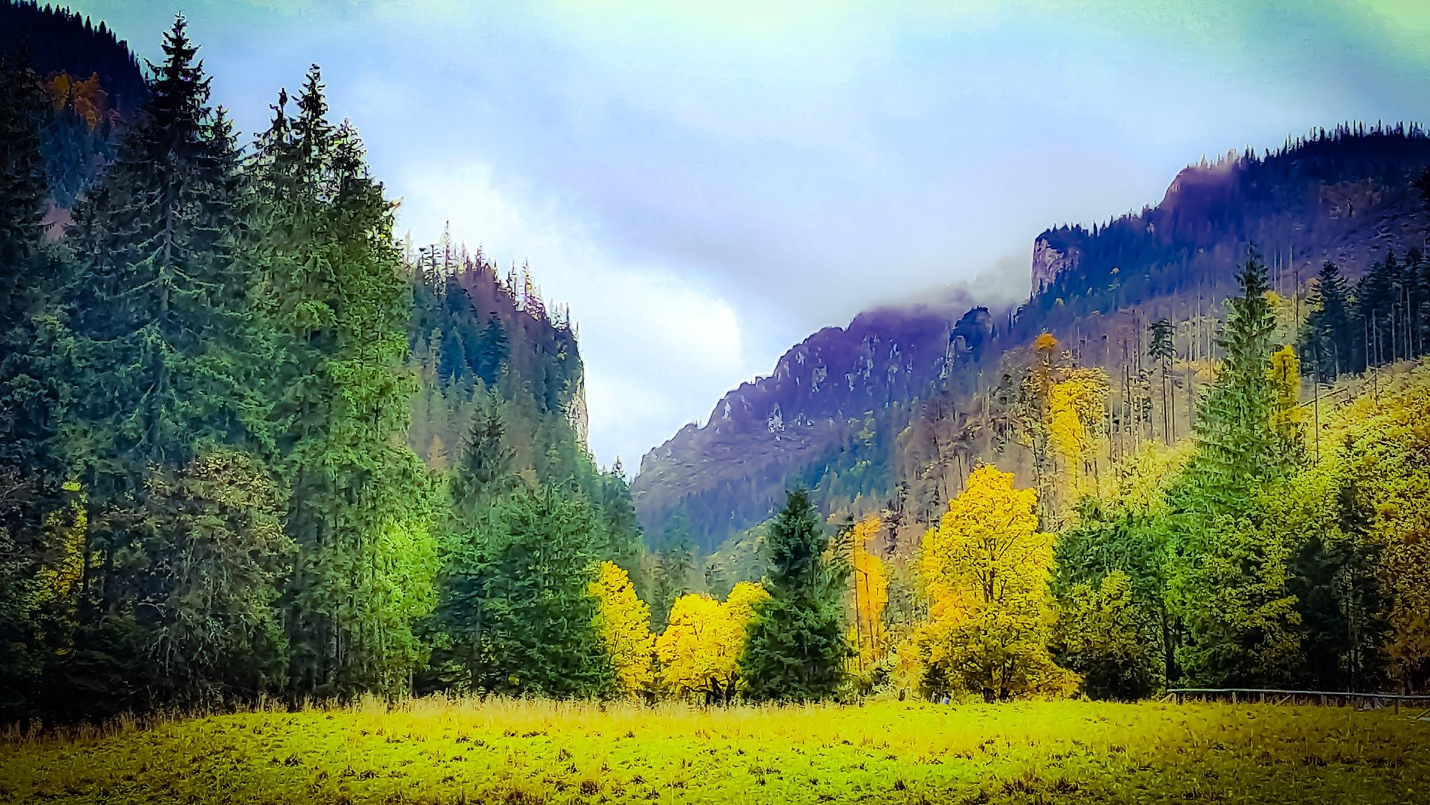 Autumn Memories  by Mikołaj Sobczak