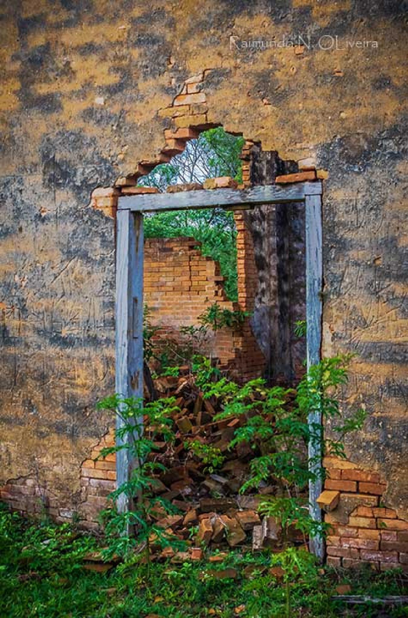 Portal  by Nibutel