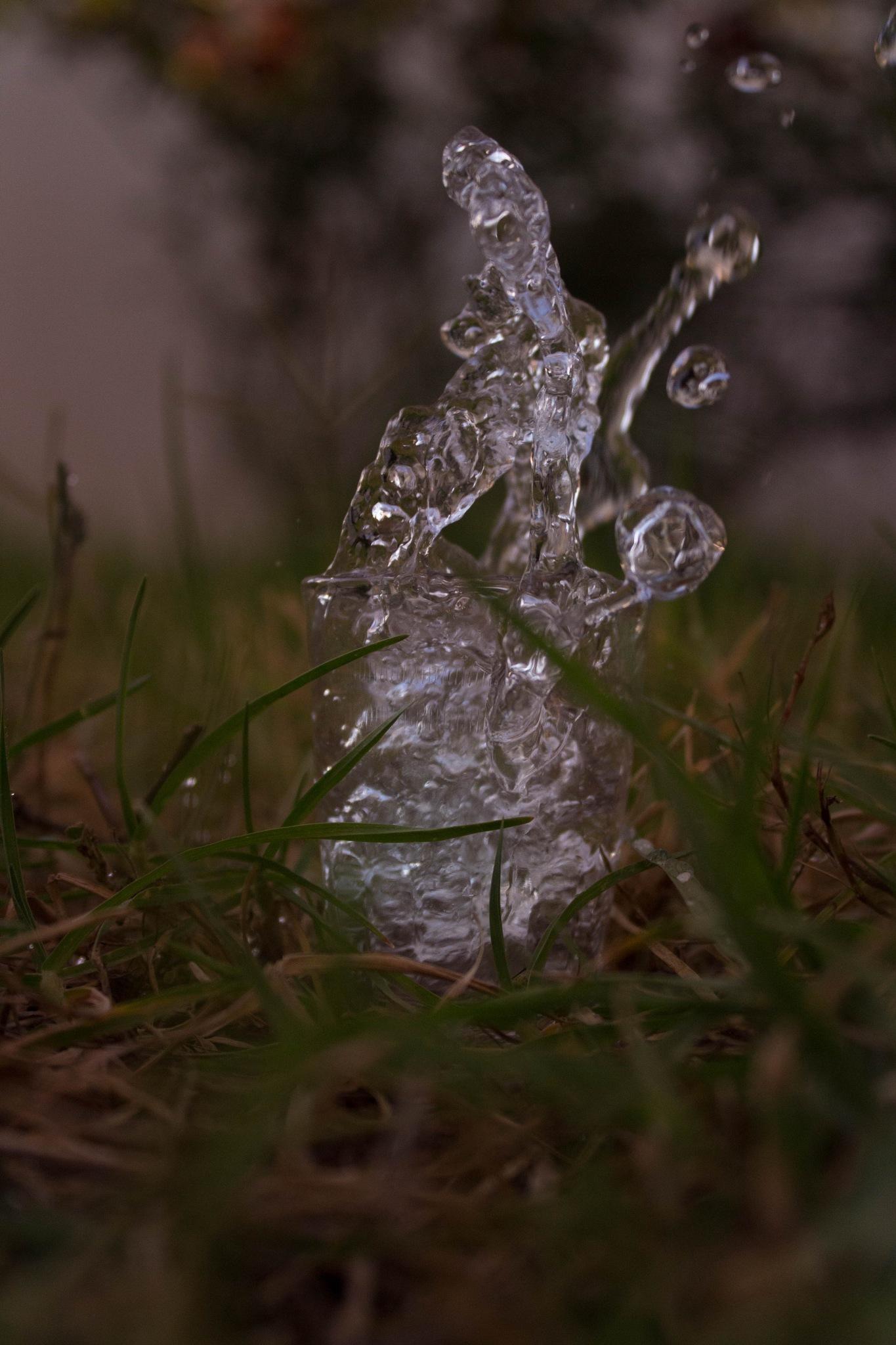 splash water by Aissa Haffar
