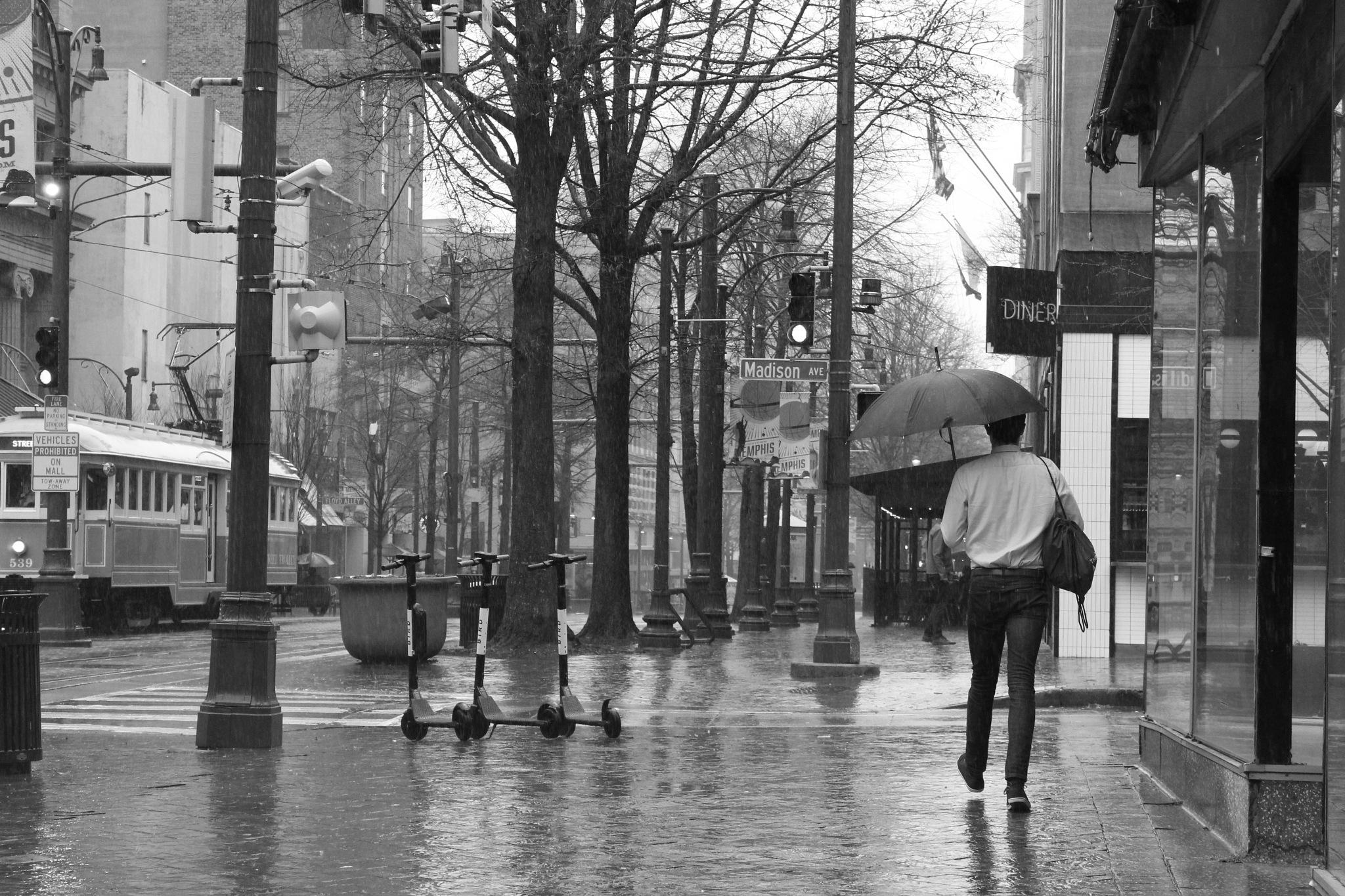 Photo in Street Photography #street photography #street #street shots #black and white #black and white photography #rain #raining #umbrella #city #trolley #buildings #bw