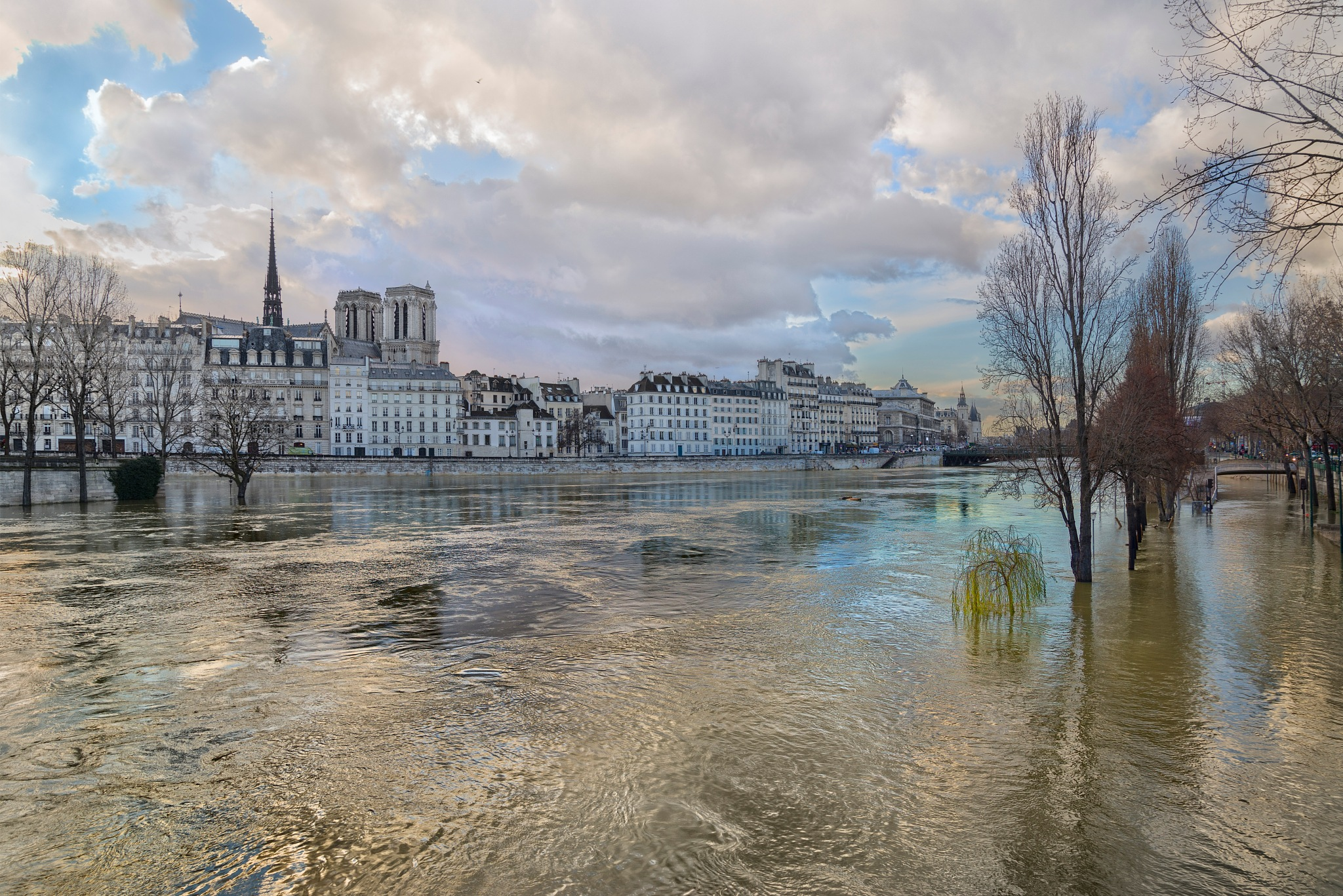 Île de la Cité seen from the Right Bank during the floods of January 2018 by David Henry