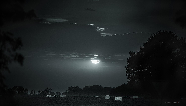 Night by Arvydas Stačiokas