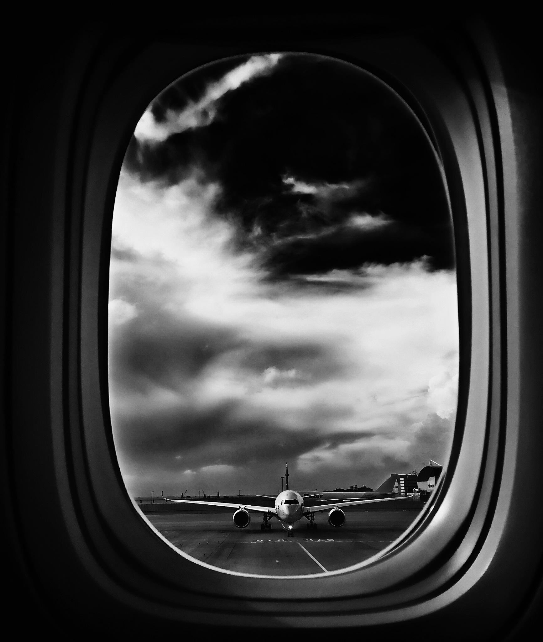 Evening flight by XQMe
