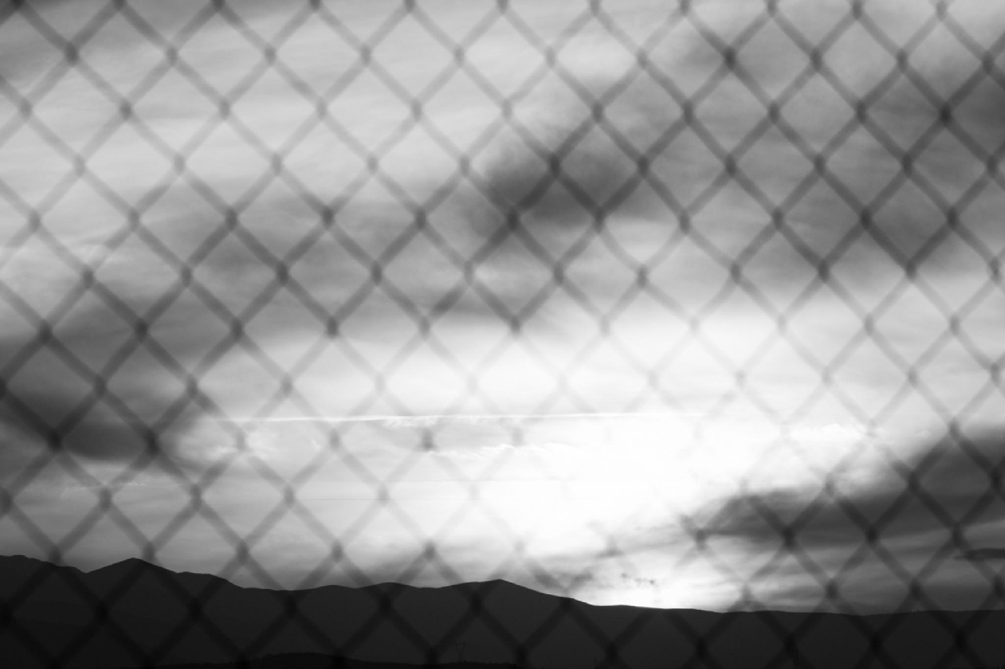 Freedom? by Janeski