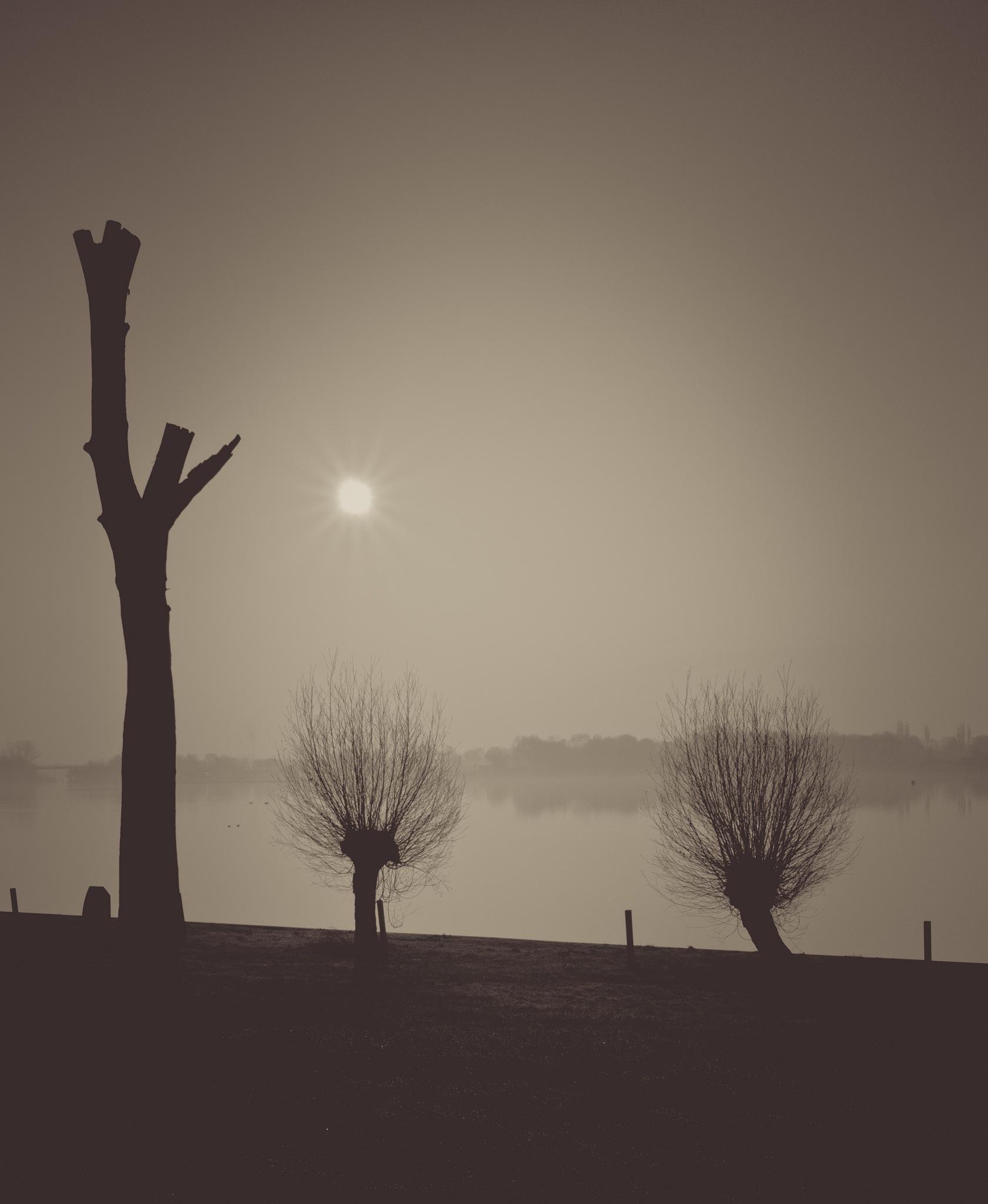 wake up people, day is raising here by Marcin Majkowski