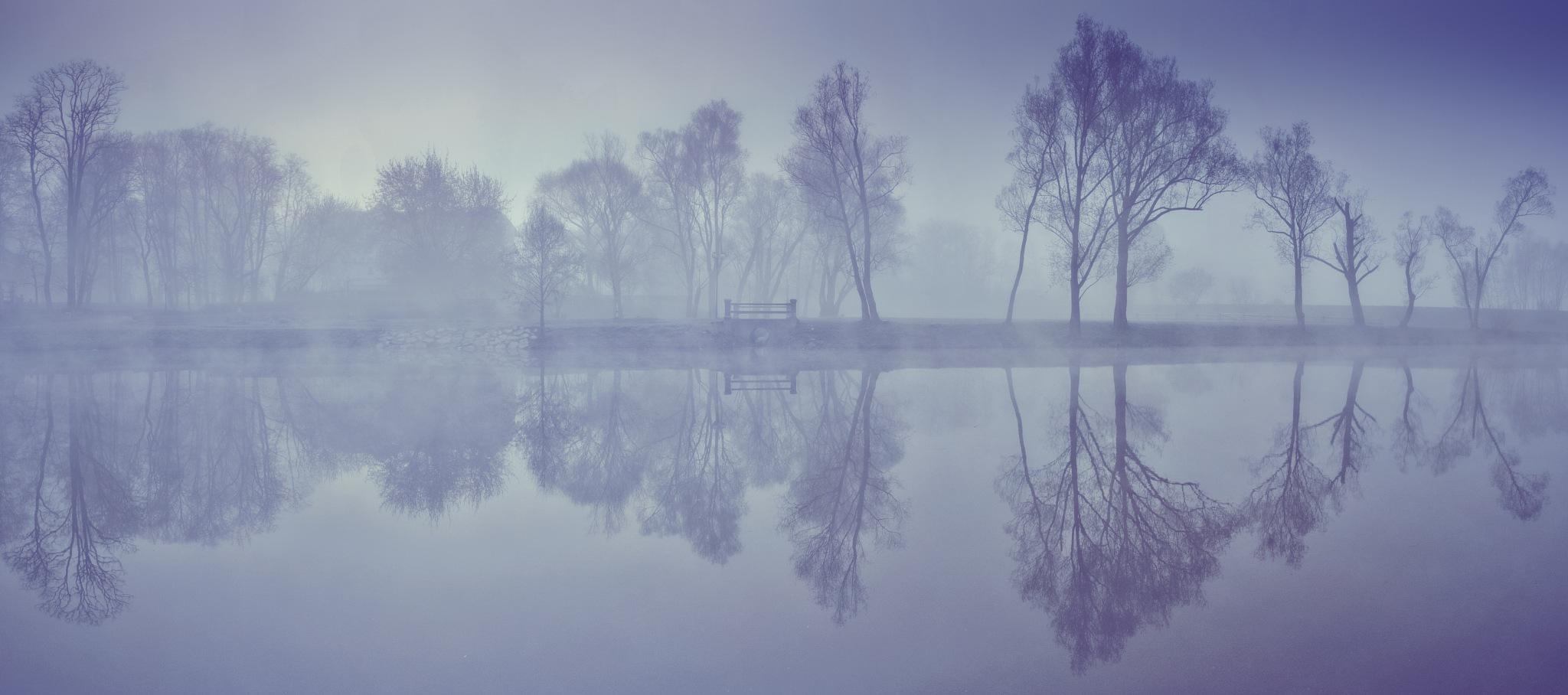 help me dreaming here by Marcin Majkowski