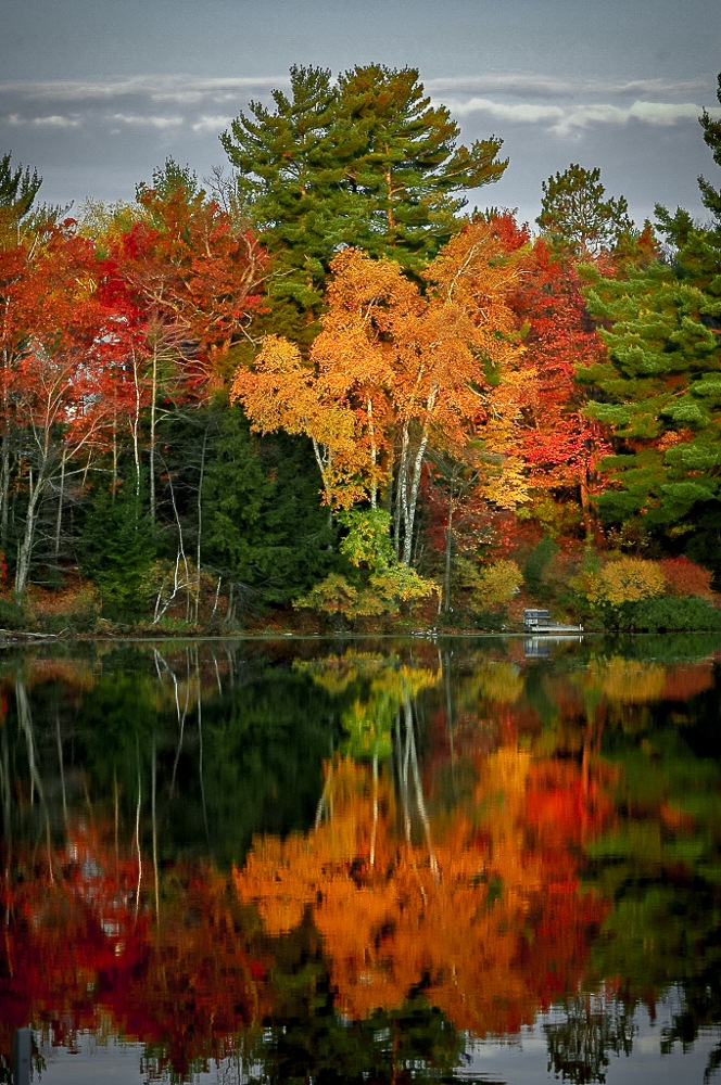 Fall colors Northern Wisconsin by Michael Haagen