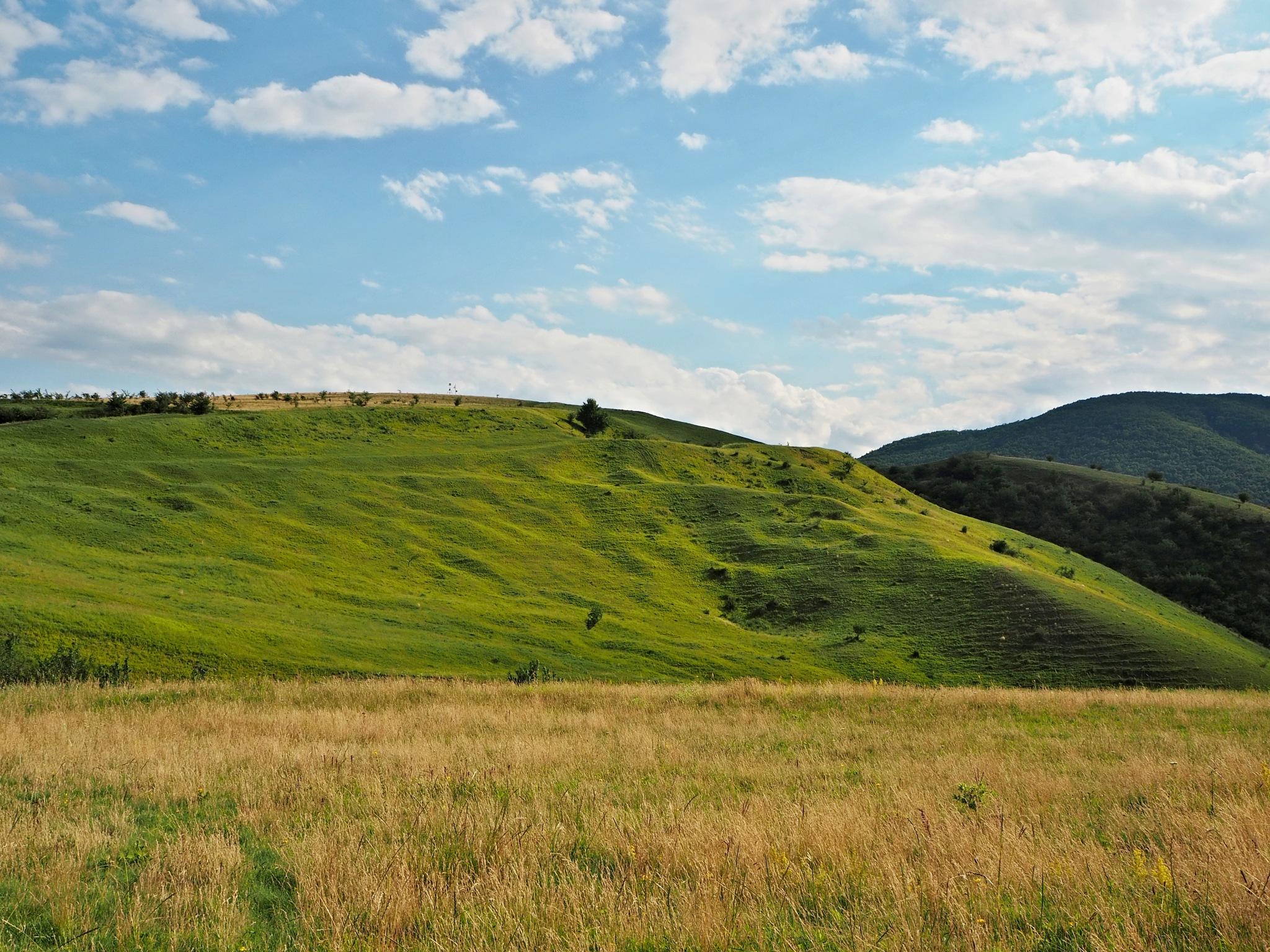 hills by bossavec