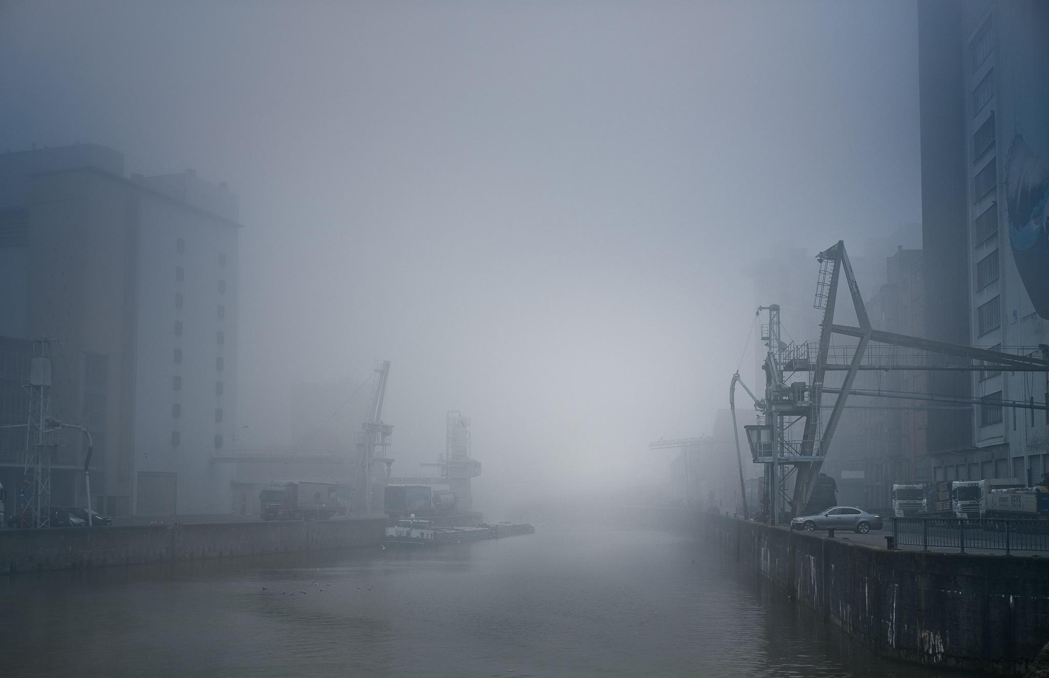 Winter blues. by Jan Beernaert