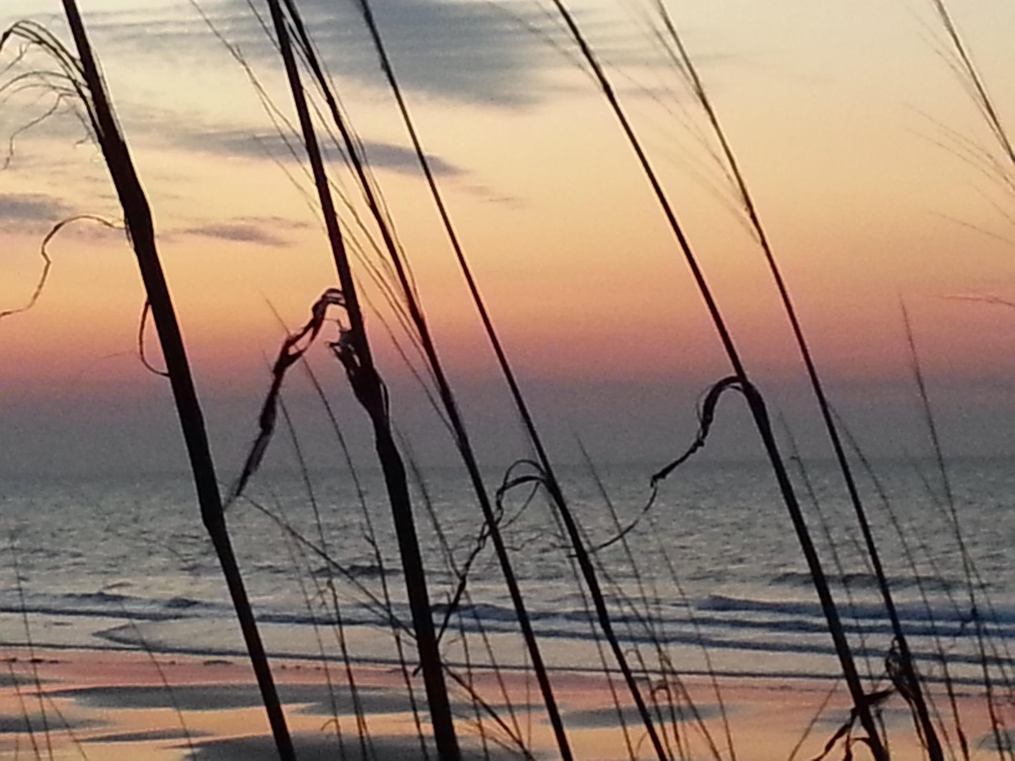 Colorful dawn at beach by Kim Venturo