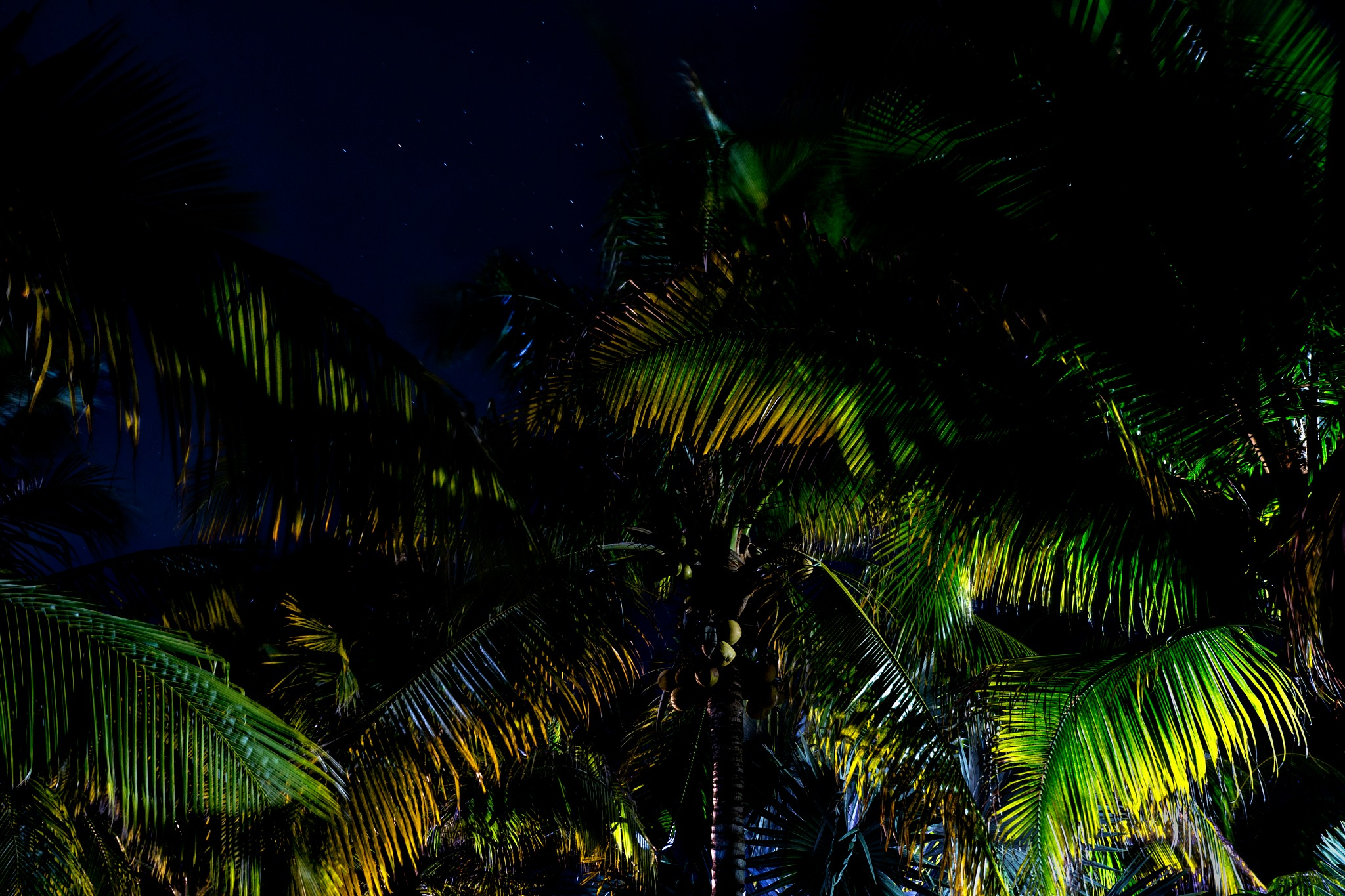 happy night by edgarramosfotografia
