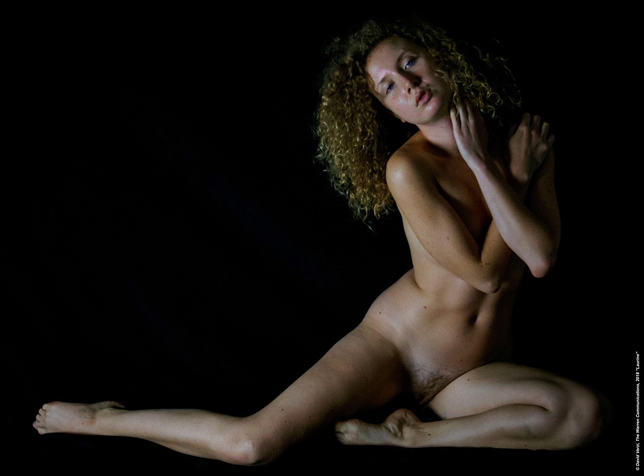 LAURINE by David Verzi