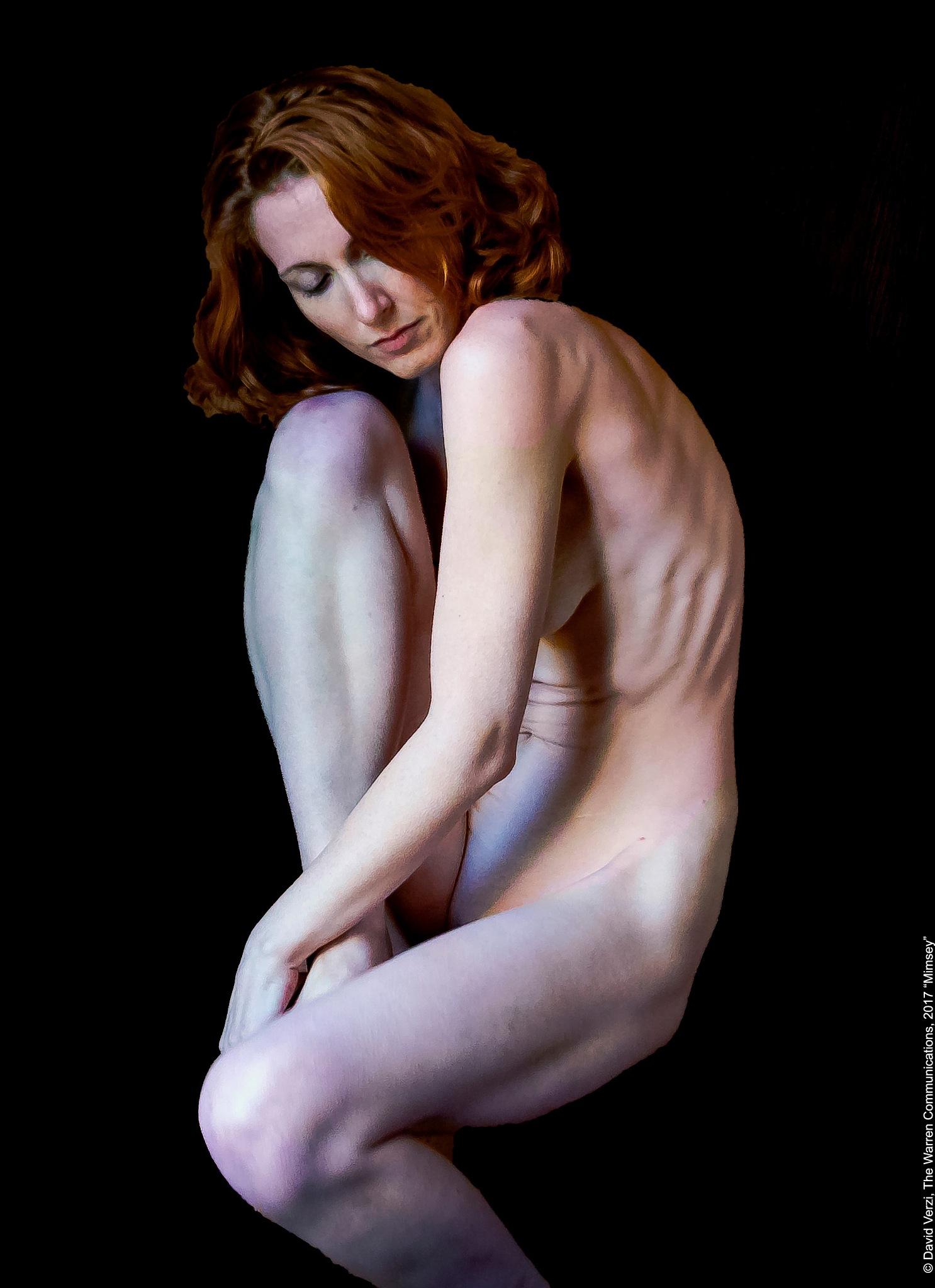 MIMSEY by David Verzi