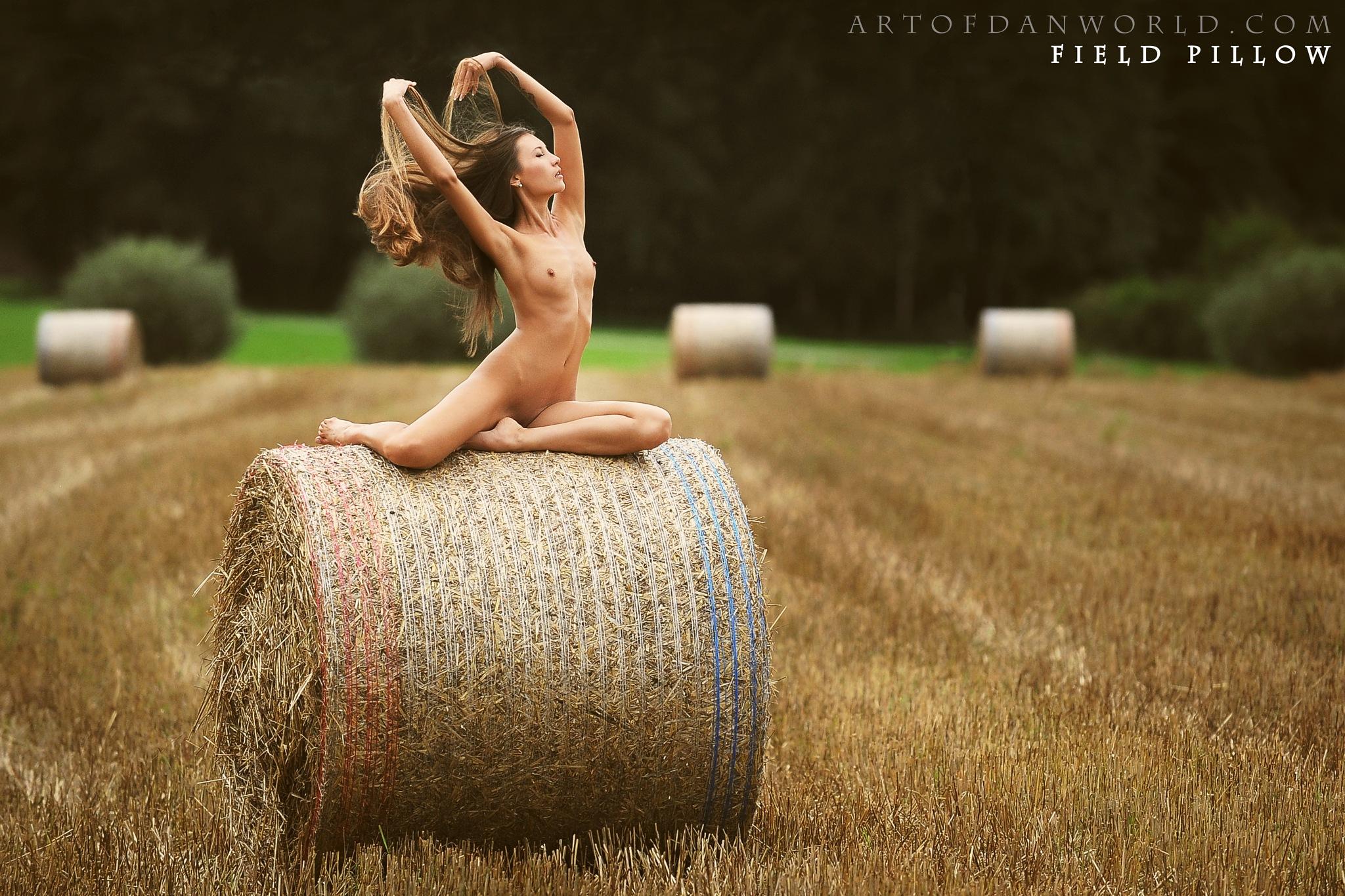 Field pillow by Artofdan Photography