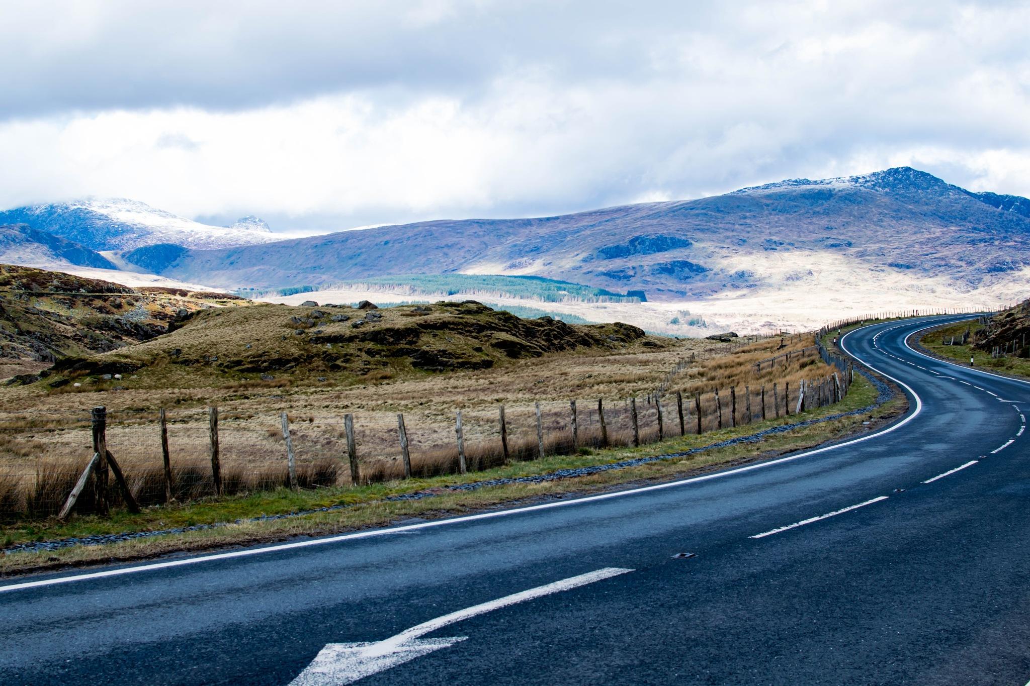Road in Wales by Saba Safdar