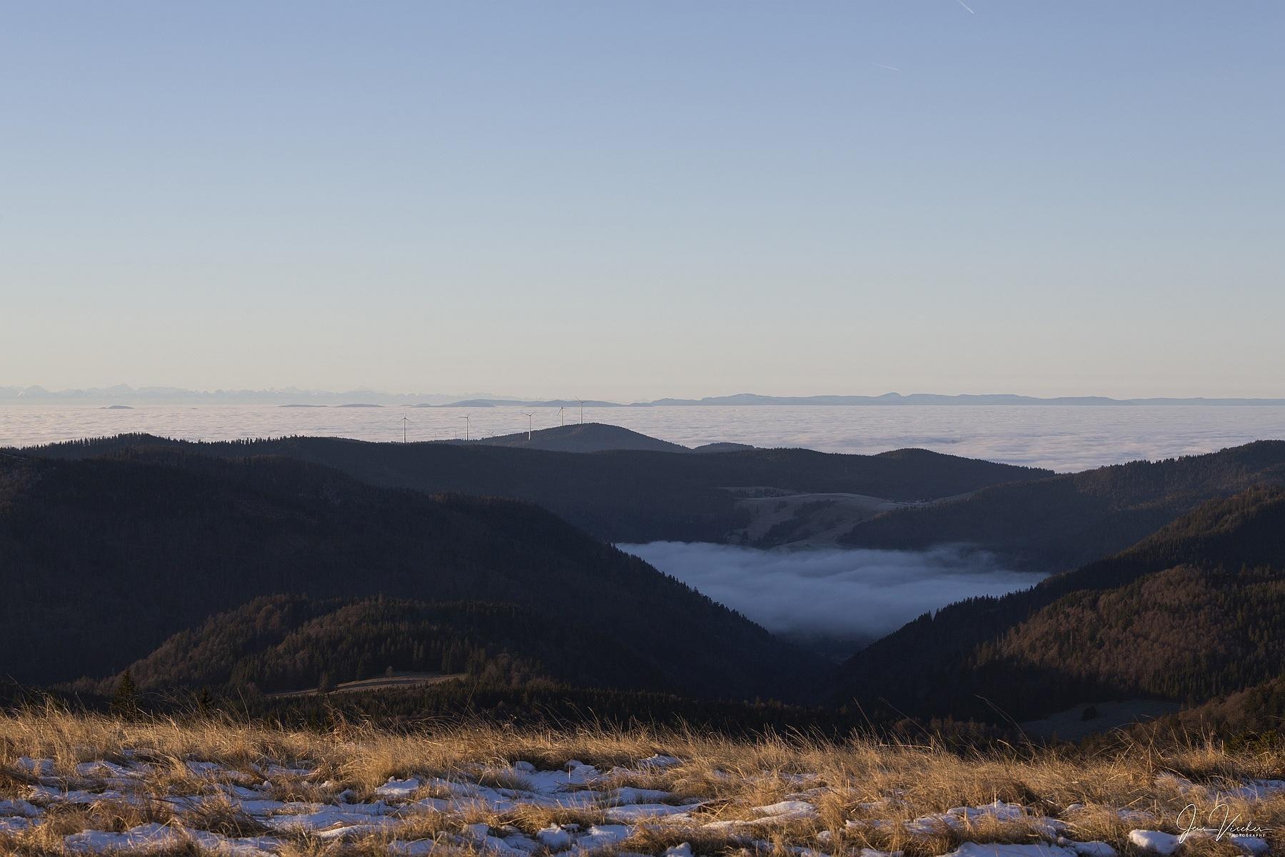 Photo in Landscape #herzogenhorn #schwarzwald #clouds #fog #alps #alpen