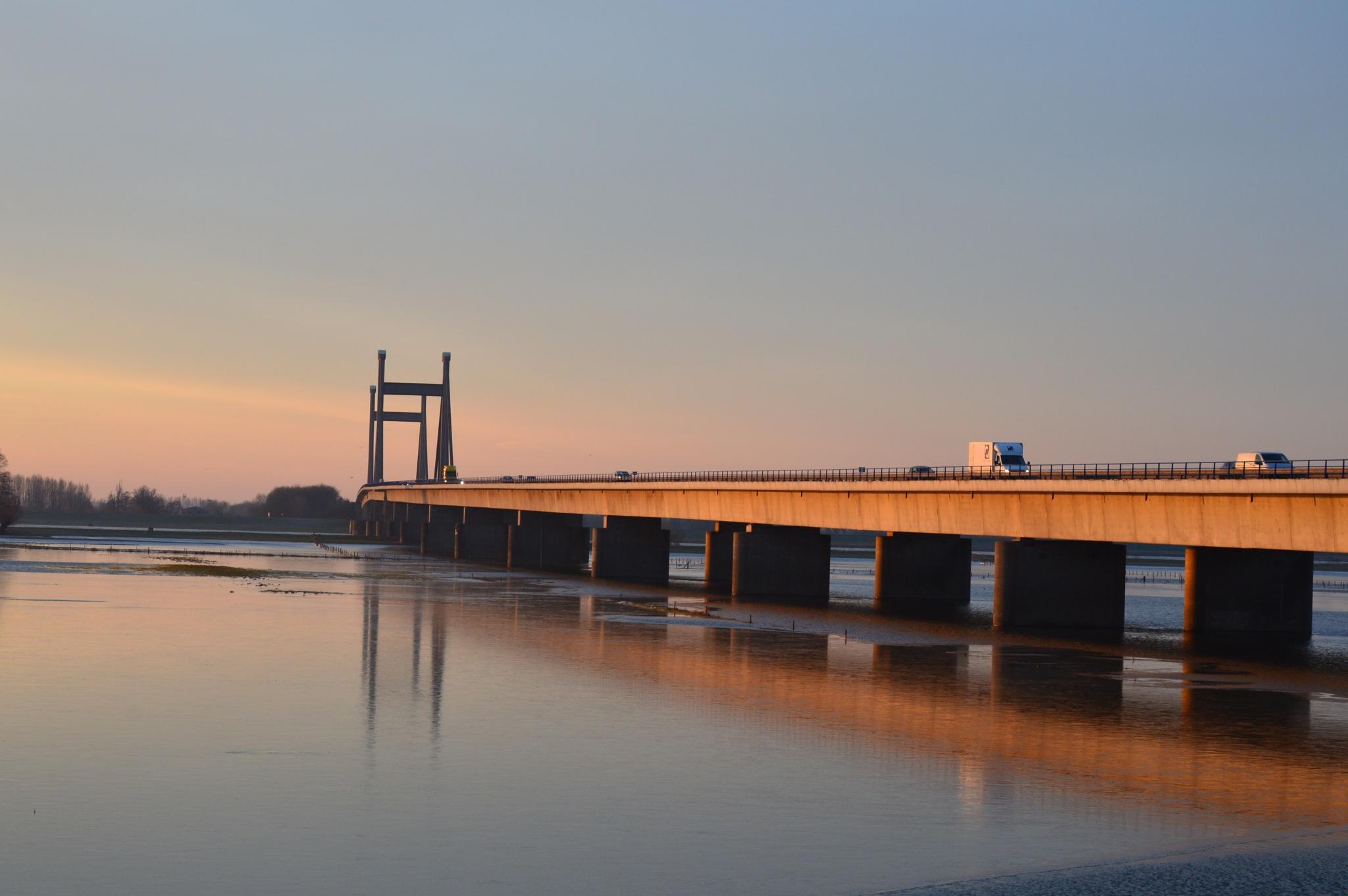Bridge by Roanne Frerejean