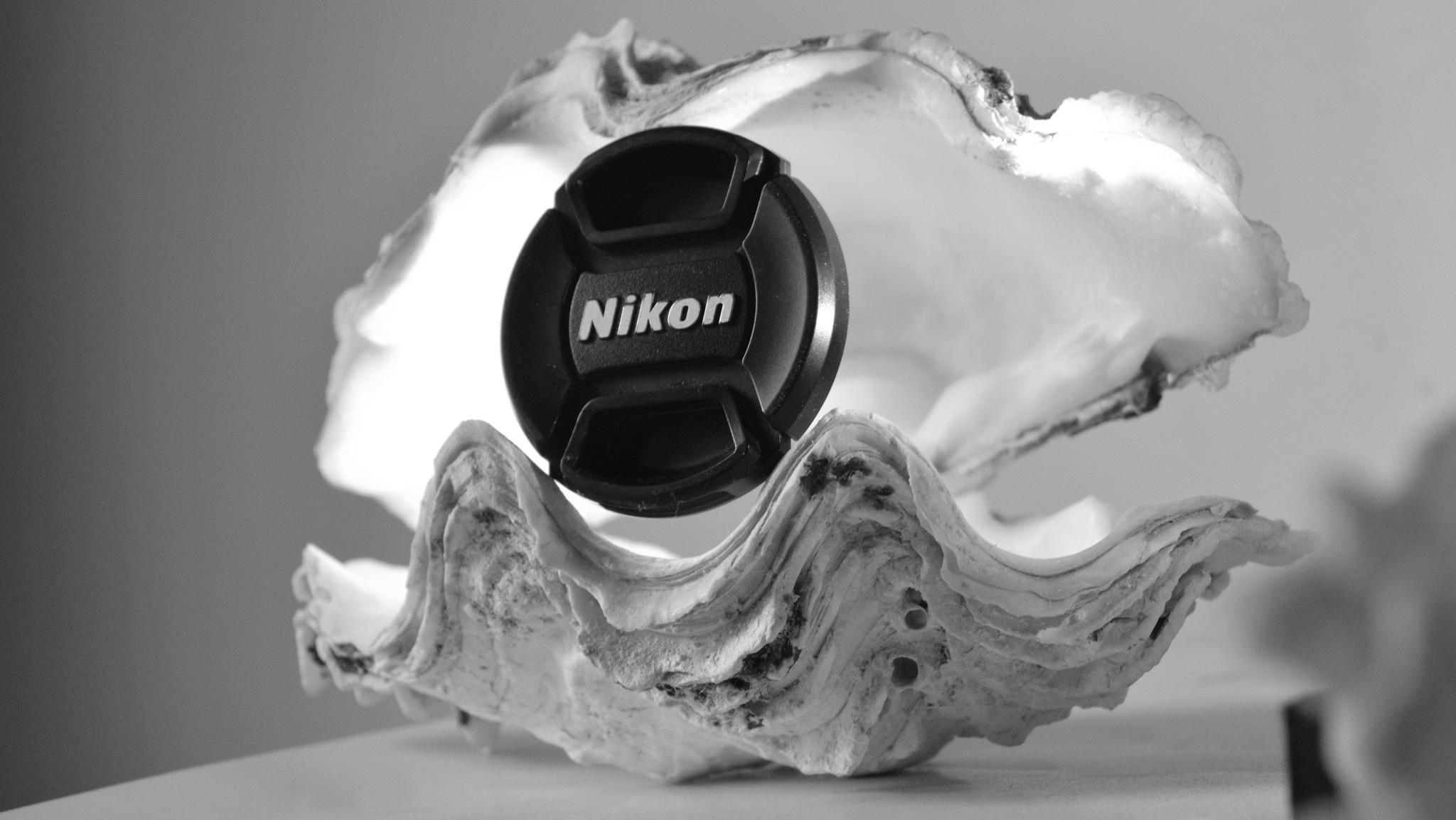 Nikon Trademark  by Attia Awadh
