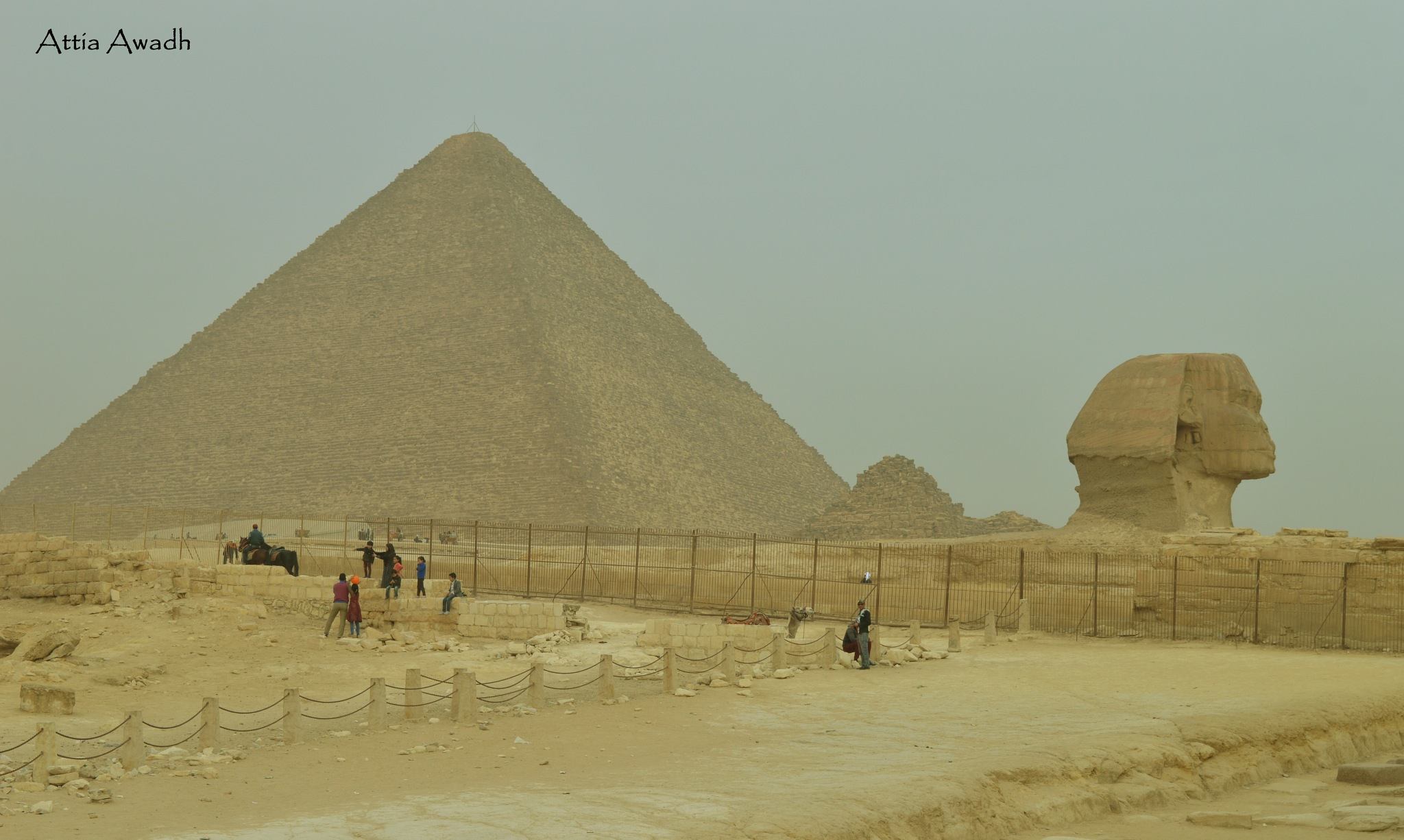 Sphinx and Pyramids by Attia Awadh