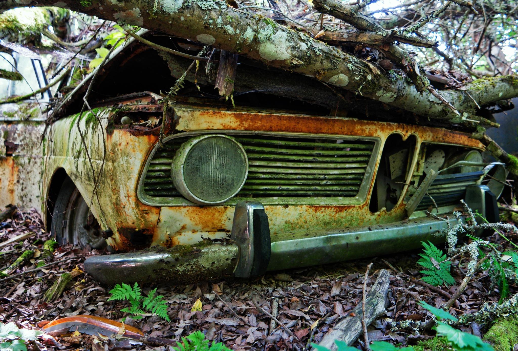 BMW by Ove Bogart Gunnarsson