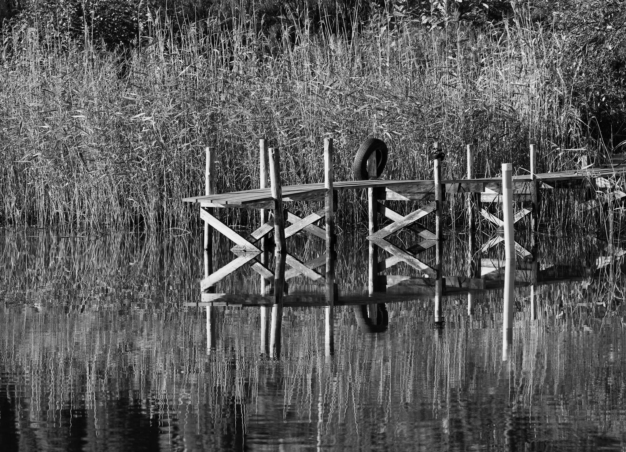 Untitled by Ove Bogart Gunnarsson