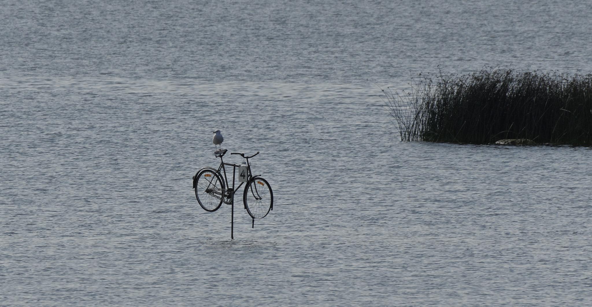 Bike Parking :) by Ove Bogart Gunnarsson