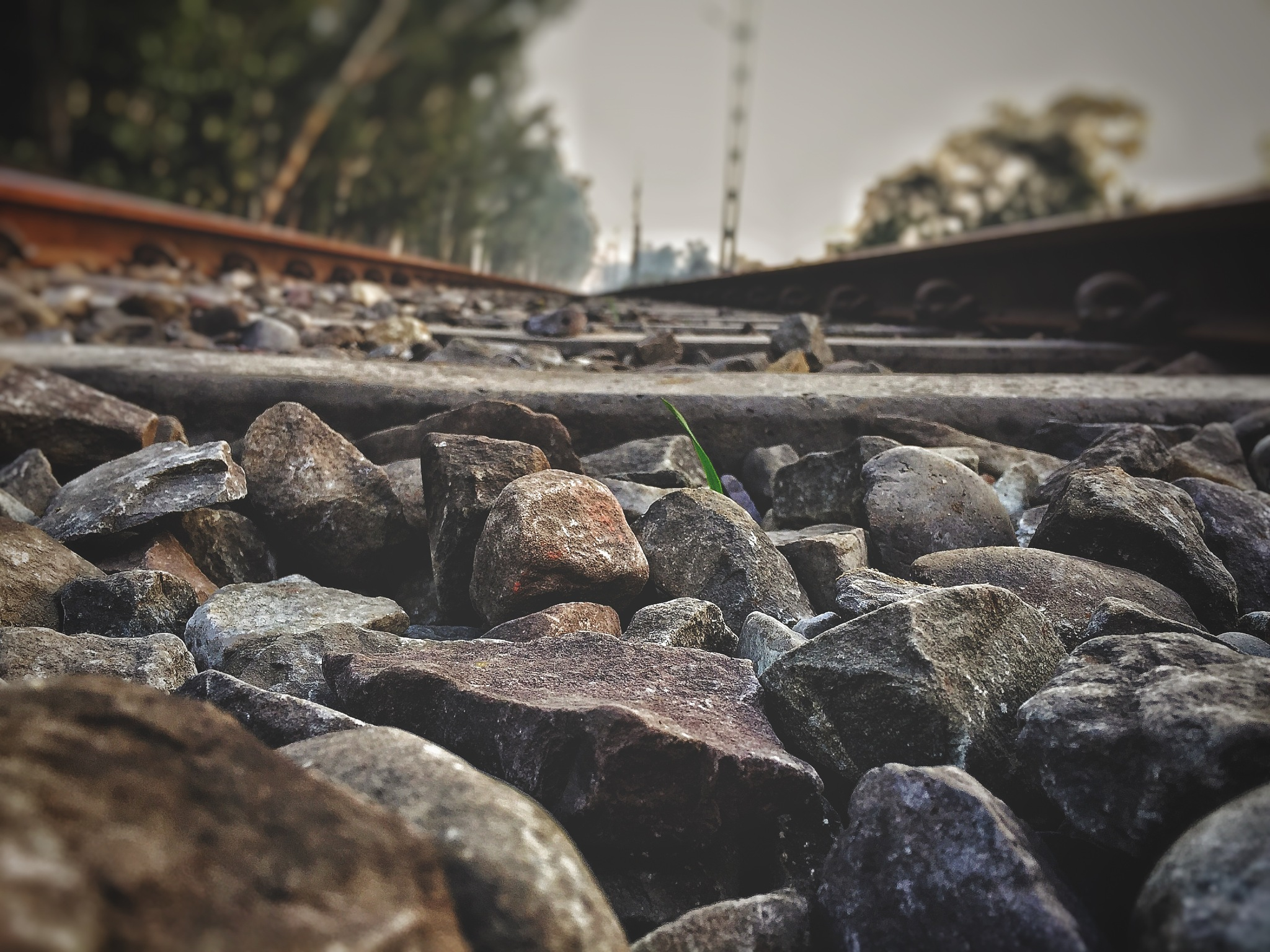 railway track by Gazal Kapoor