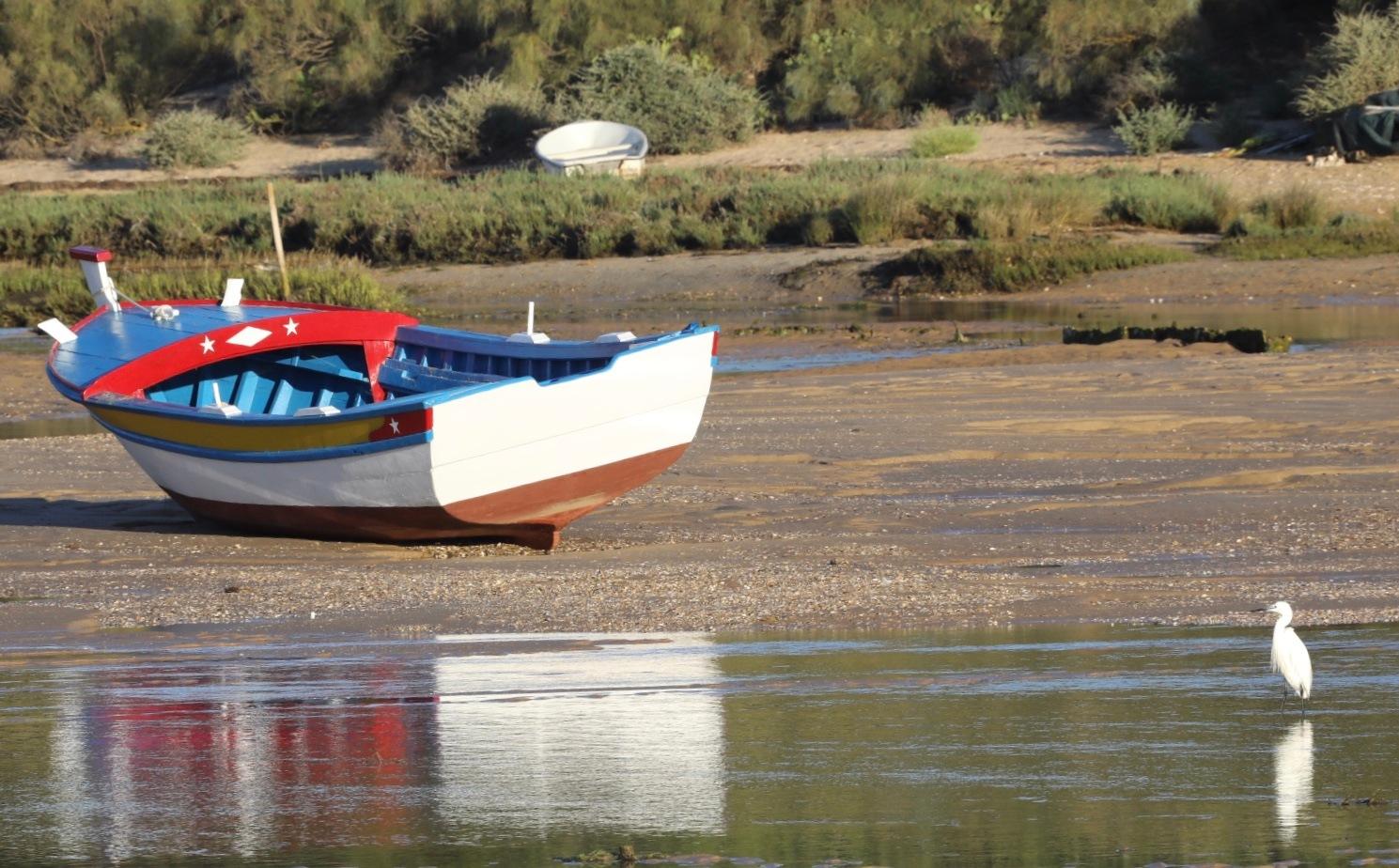 Looking at the boat by Francisco Sá da Bandeira