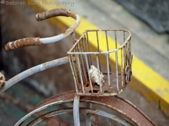 Rusty Bike  by Debbie Clay