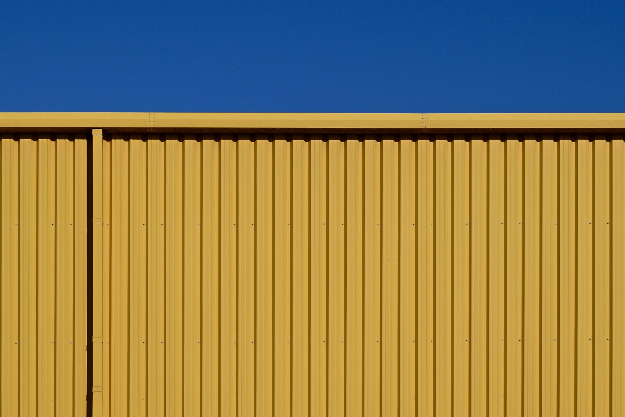 Blue and Yellow by Will Compton