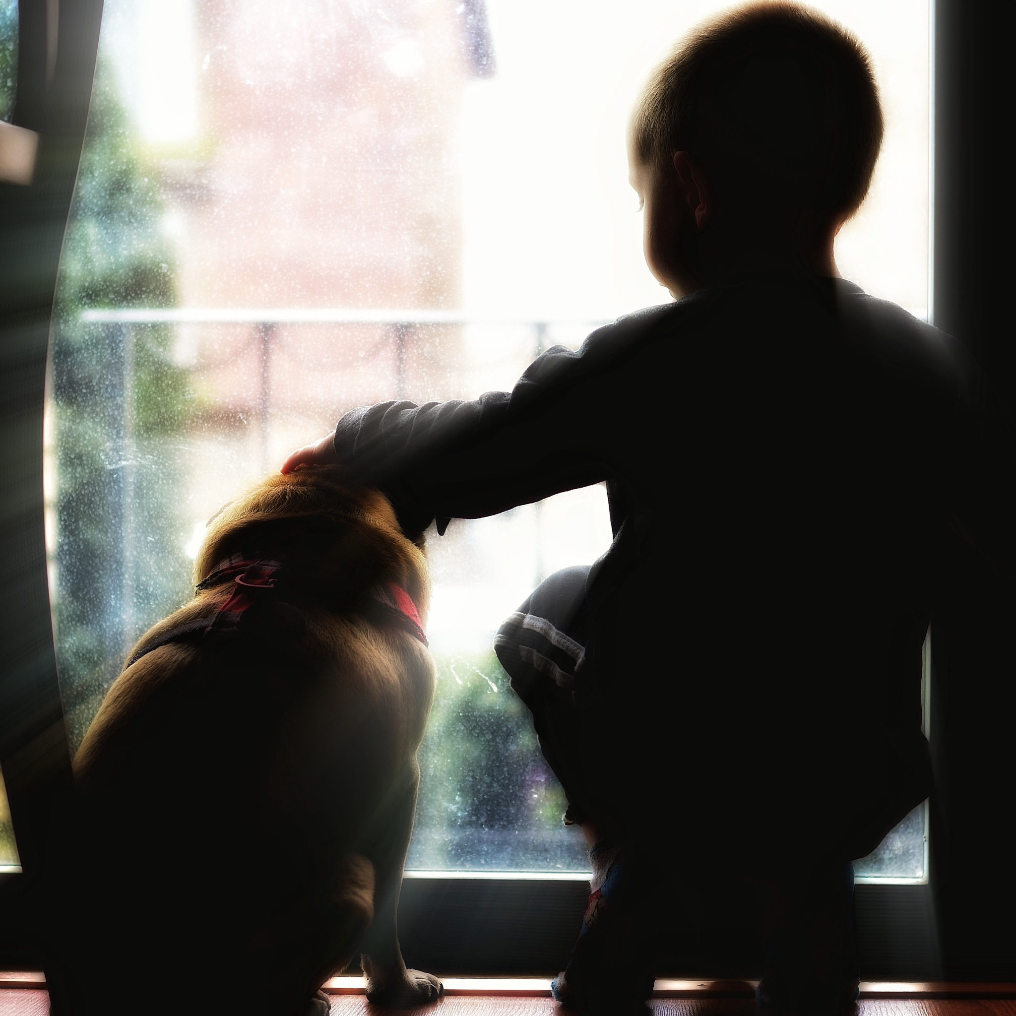A boy and his dog by Mike Sullivan