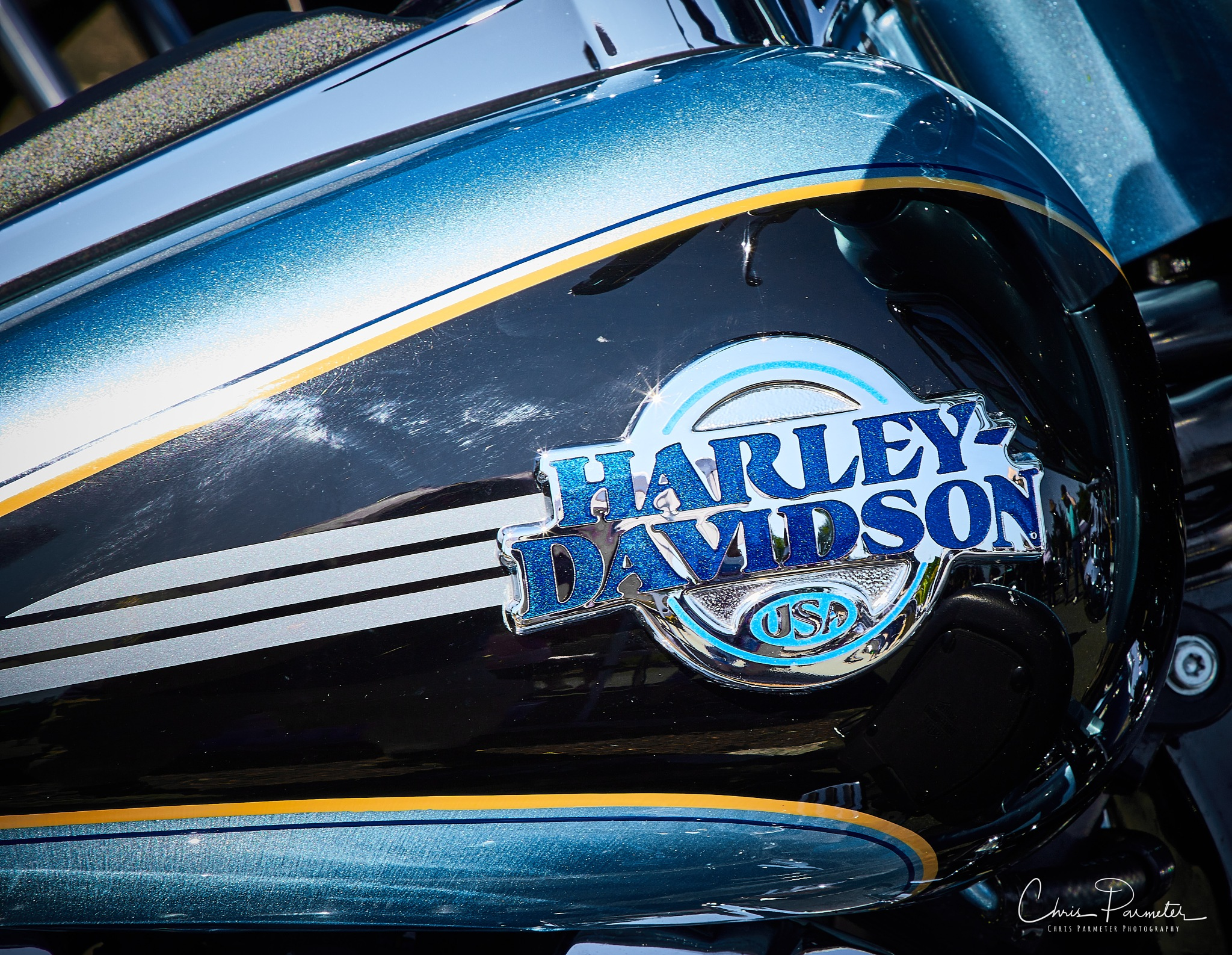 Harley Davidson by Wet Dog Studios