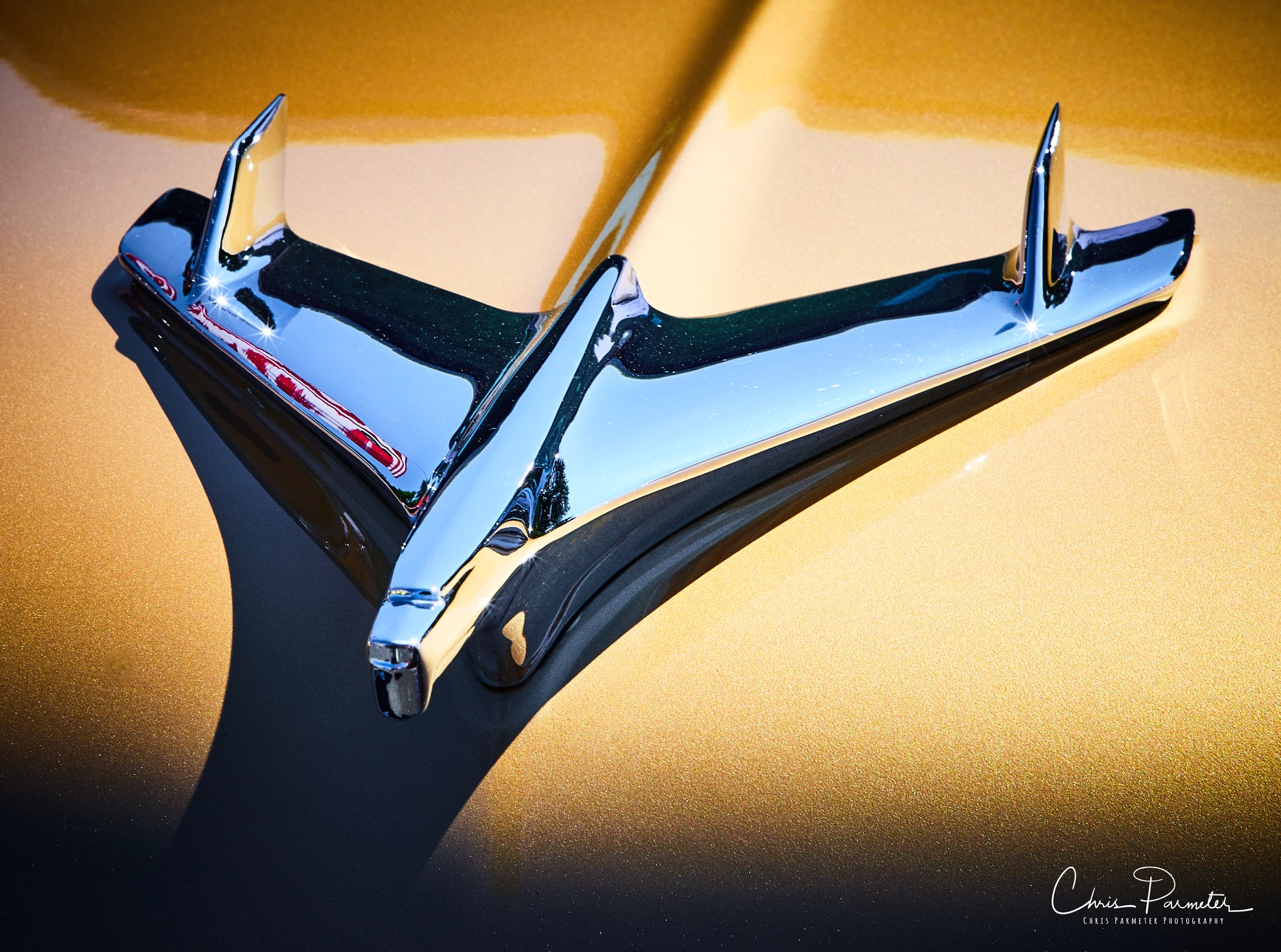 50's Chevy Hood Ornament by Wet Dog Studios