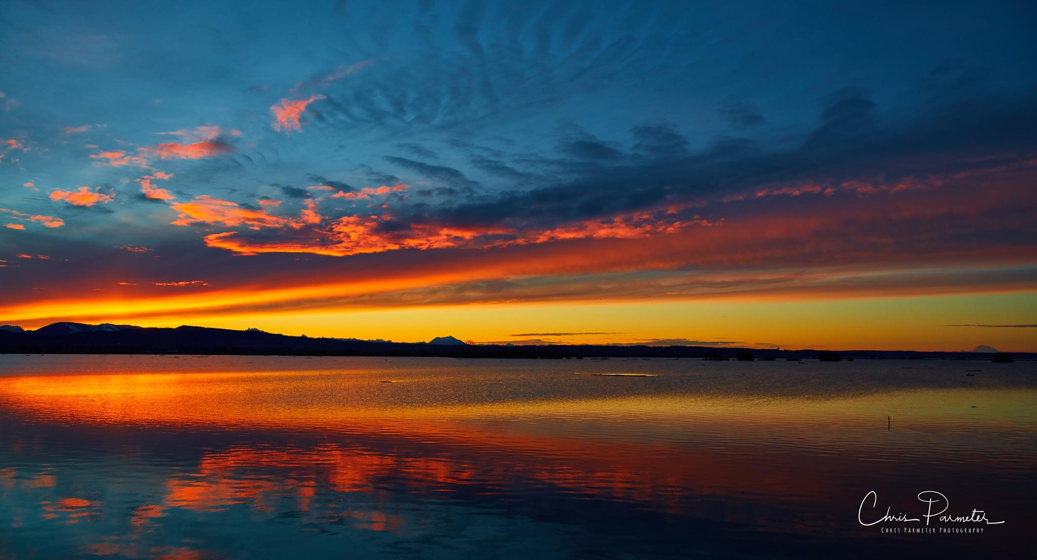 Sunrise on Skagit Bay by Wet Dog Studios