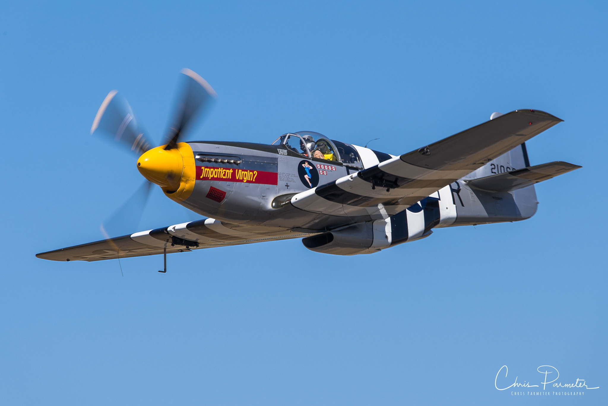 P-51 Mustang by Wet Dog Studios