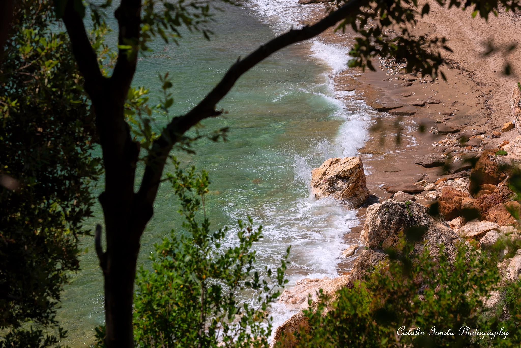 Photo in Landscape #thessaly #greece #greek #grecia #elada #holiday #travel #seascape #seashore #landscape #beach #aegean #aegean sea #volos #paltsi #potistika #pelion #pilion #eastern pelion #travel photography #travel photographers #green #forest #wild greece #wild beach #vlahos #vlahos2003 #vlahos 2003 #fotograf catalin ionita #fotografie catalin ionita #catalin #catalin ionita #catalin ionita photography #catalin ionita photographer #travel in greece