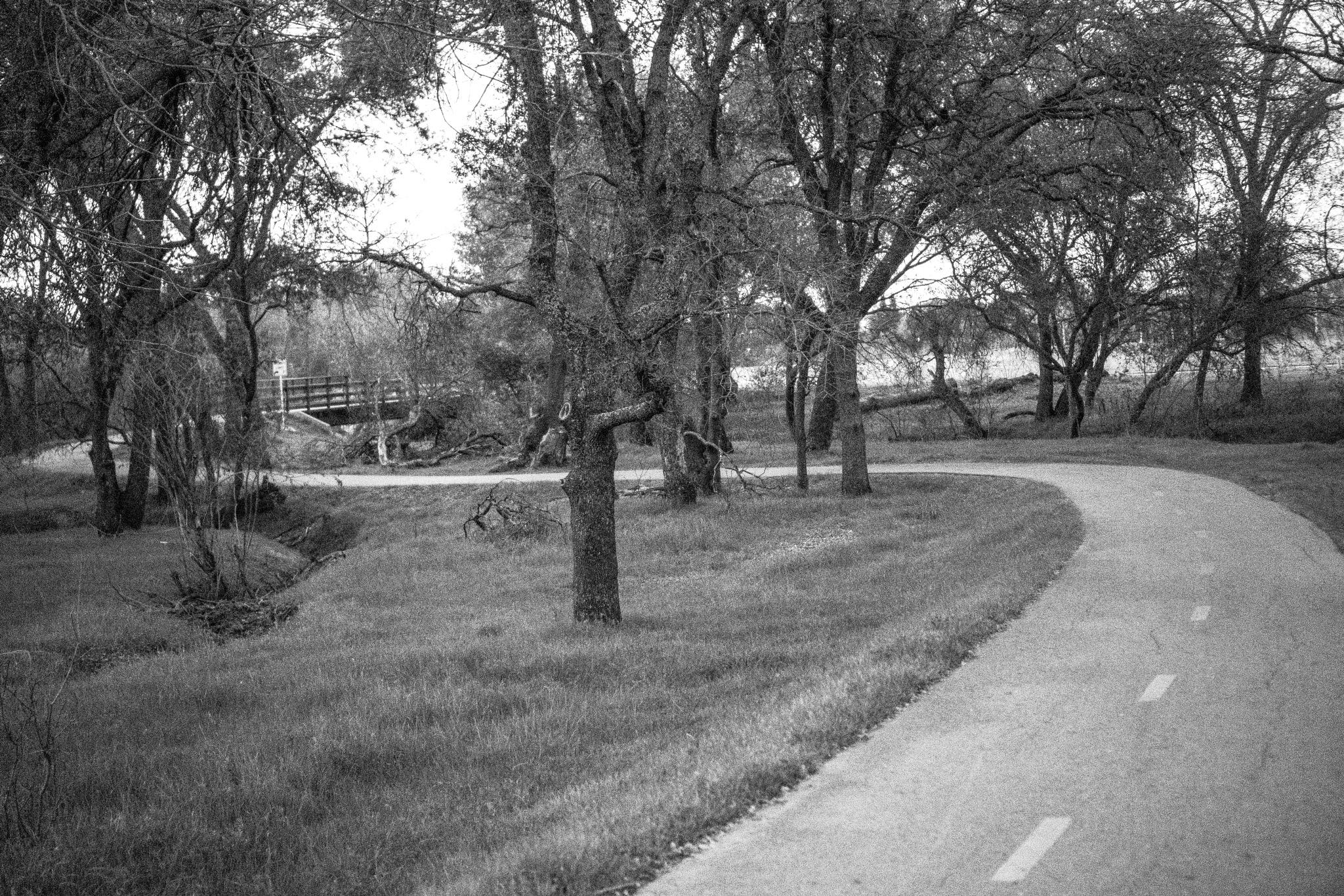 Bike Trail by James Hicks