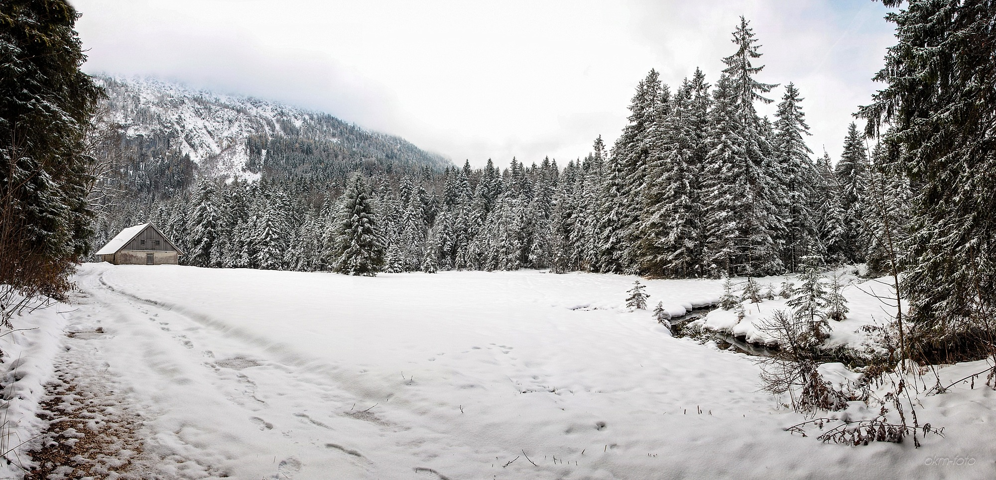 Photo in Landscape #snow #forest #frillensee #germany #alps #forest road #panorama #greek