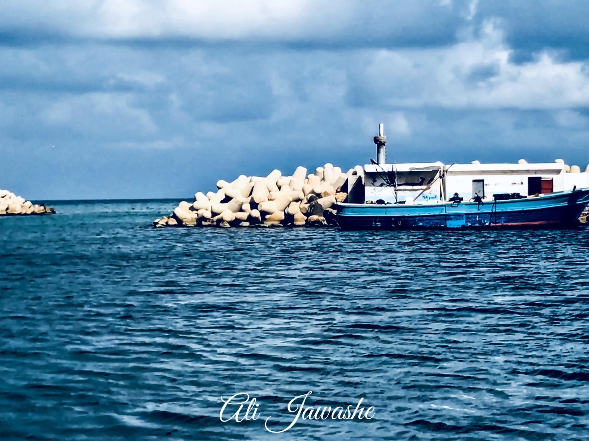Fish Harbor  by ALI Ediym