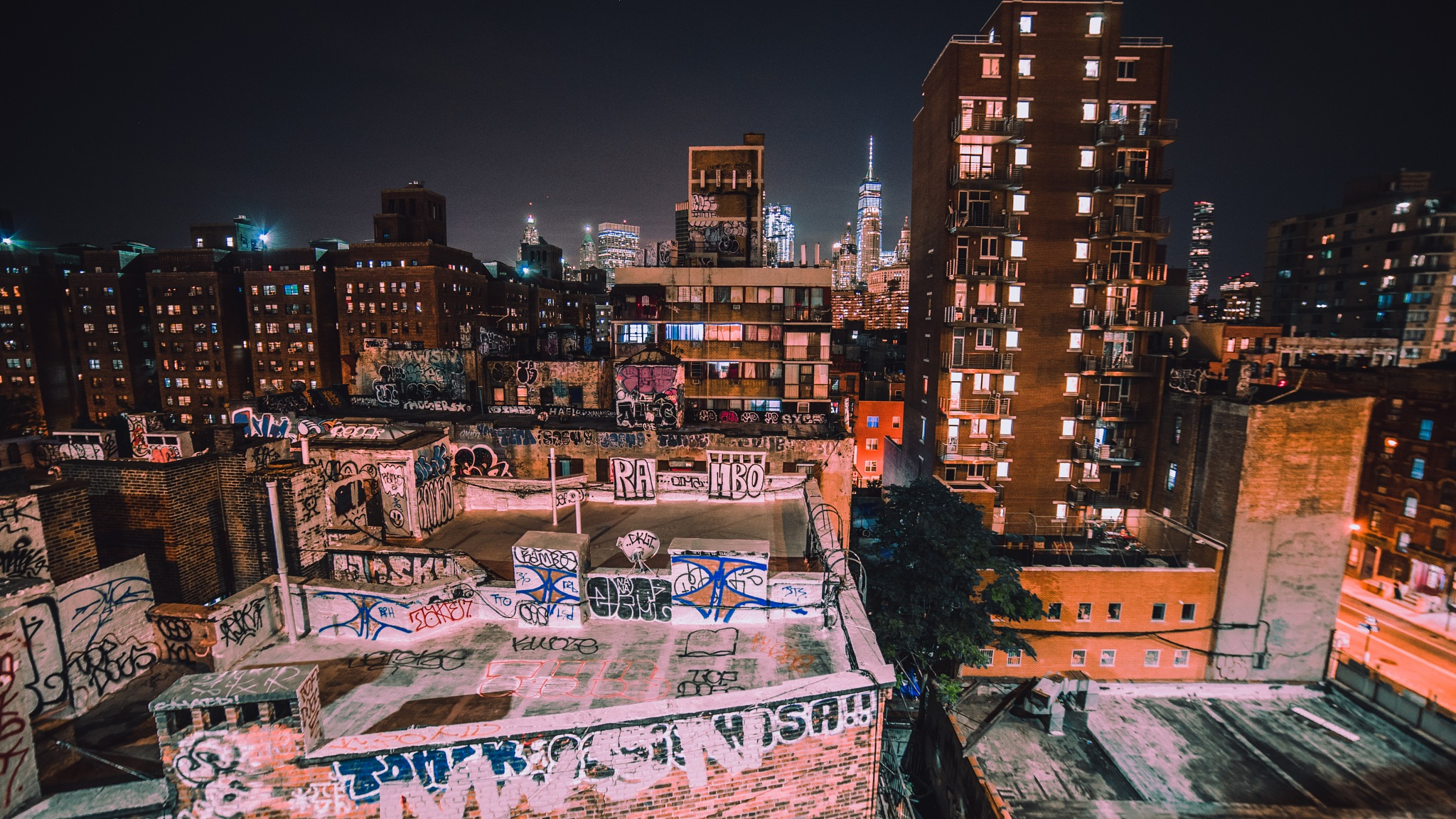 Manhattan bridge views  by George Ashman