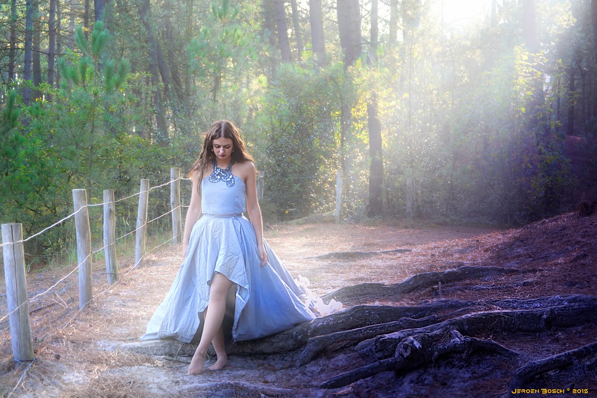 Enchanted  by jeroen bosch