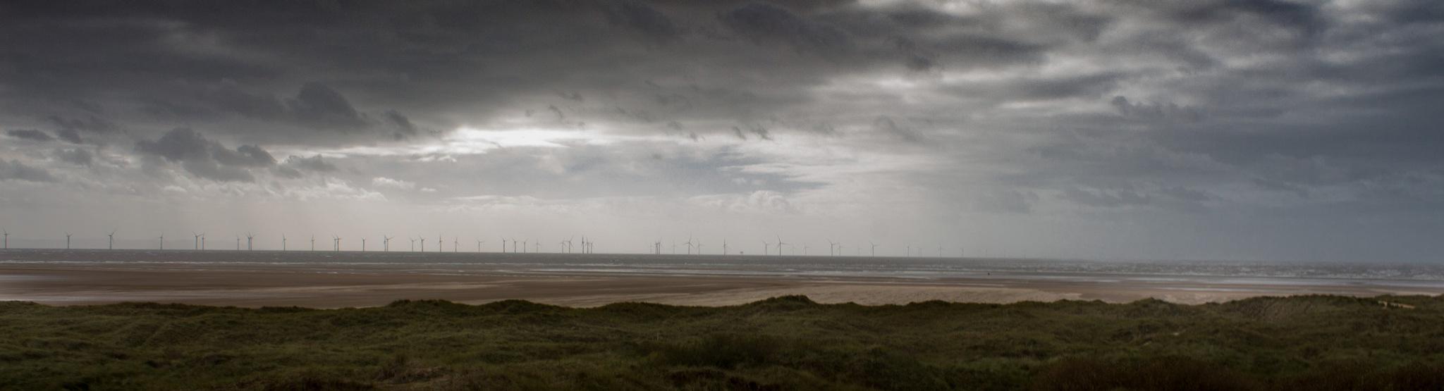 Stormy by Luke Nield